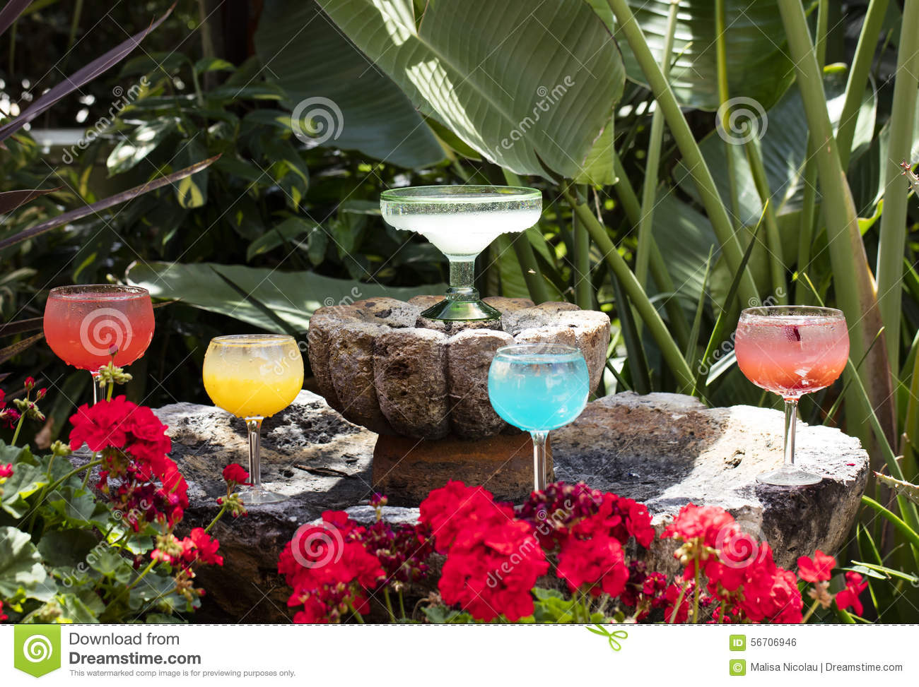 Grouping Of Margarita Glasses And Drink Stock Photo Image