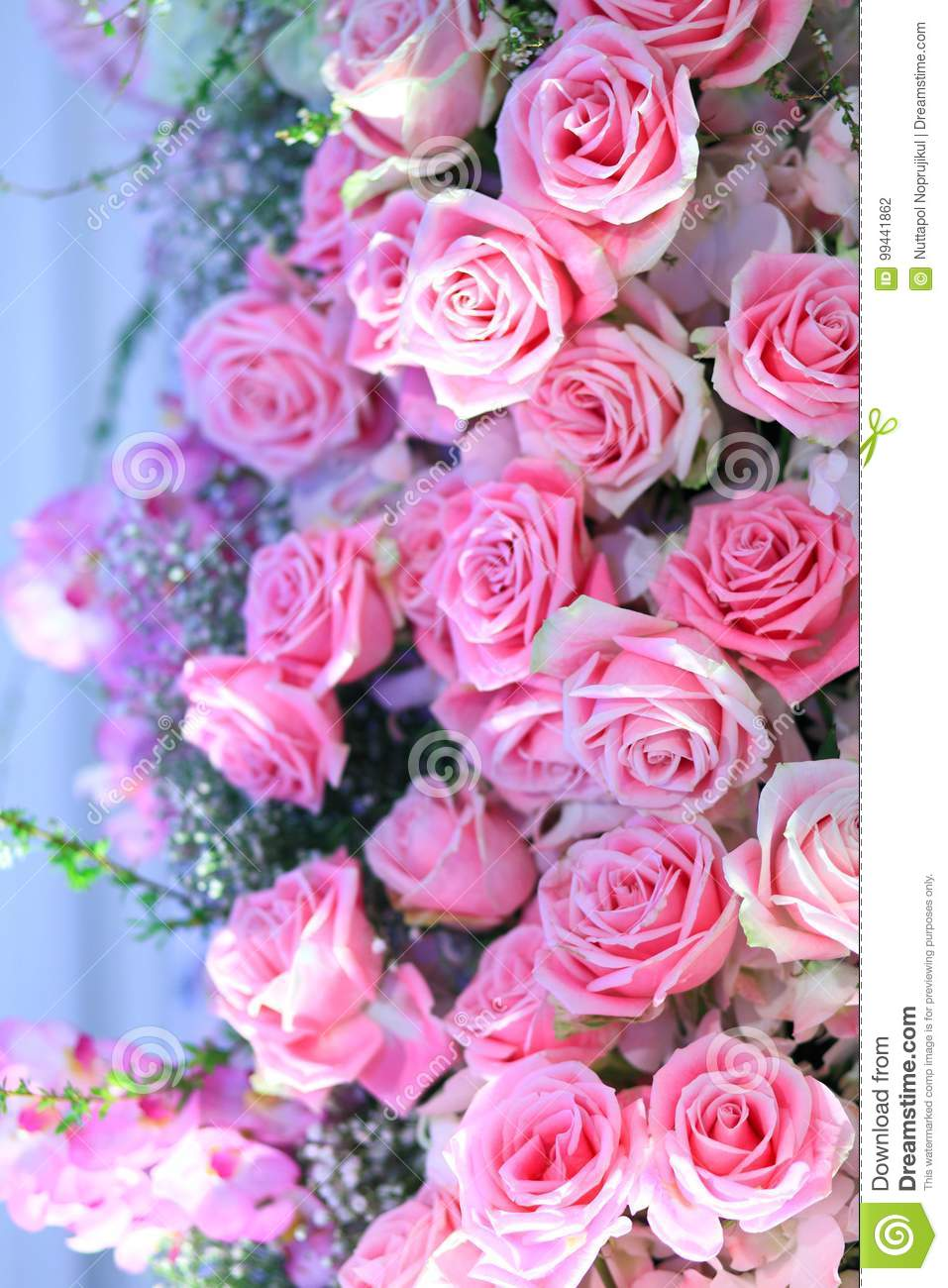 Grouping Of Pink Bridal Bouquets Pink Roses And Babys Breath