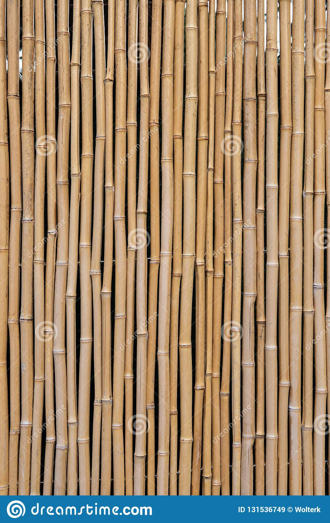 Grouping of bamboo pattern forming a fence backdrop or background