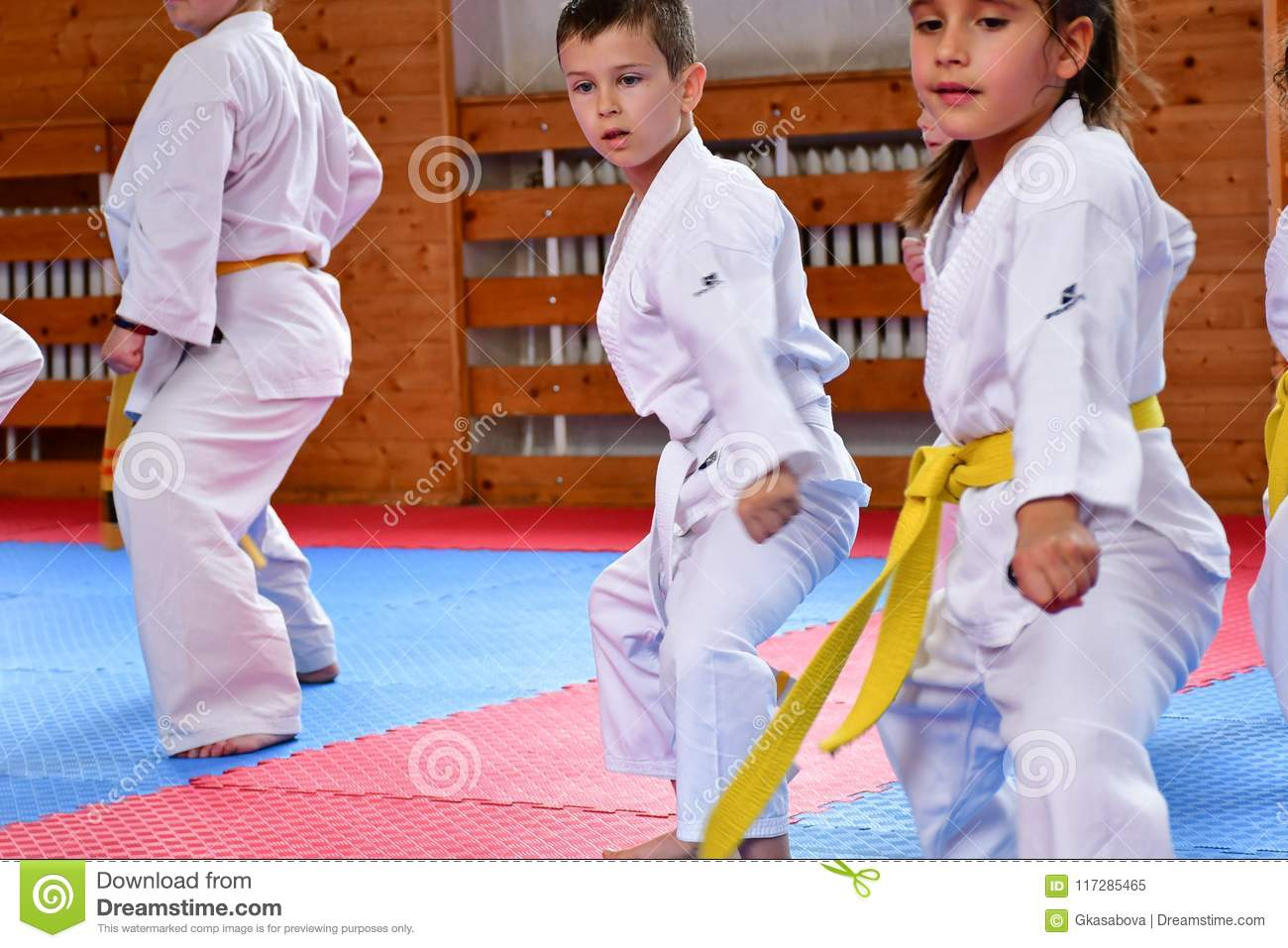 Karate training  editorial image  Image of arts, fighting