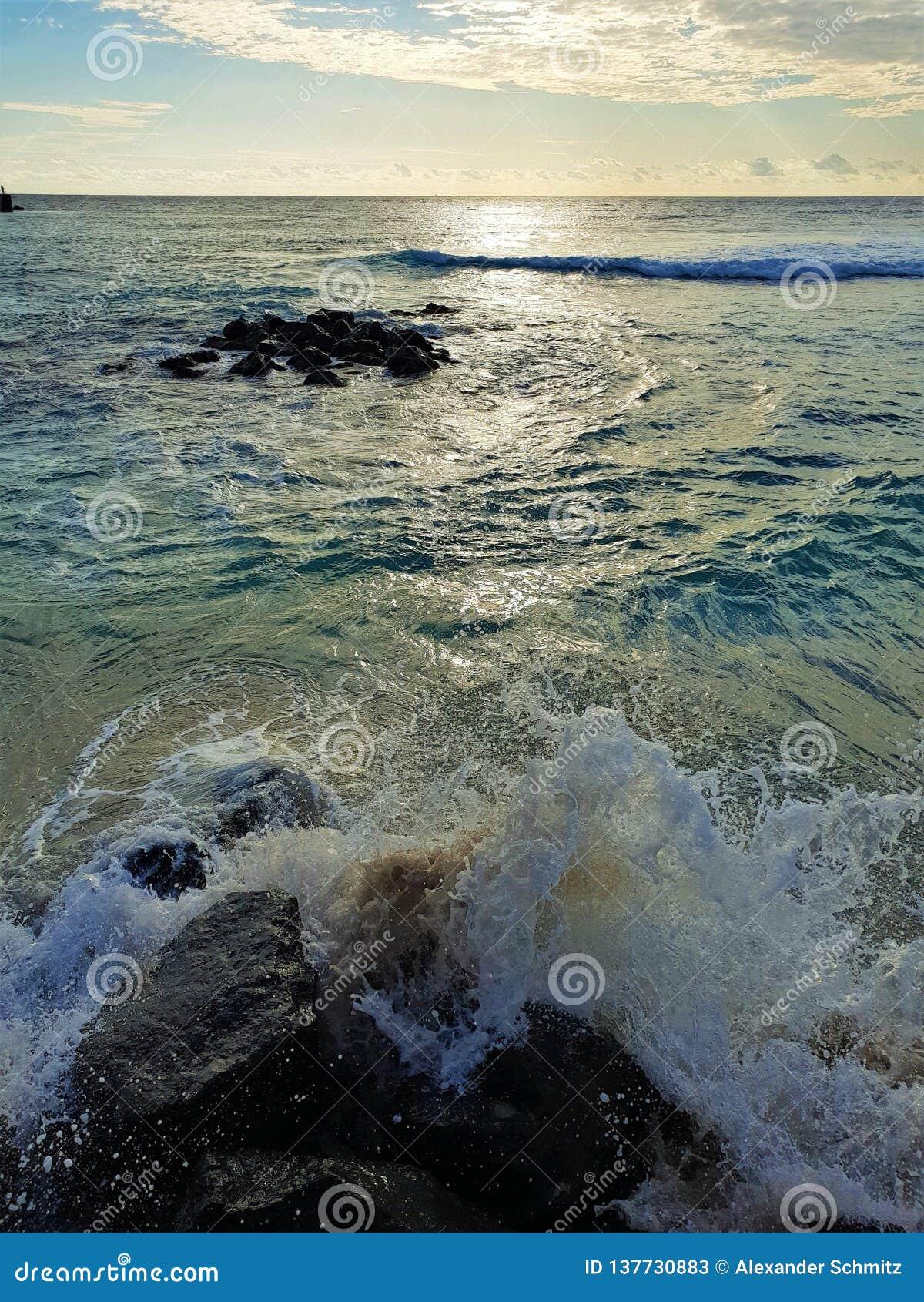 Grov strand på den Mauritius ön