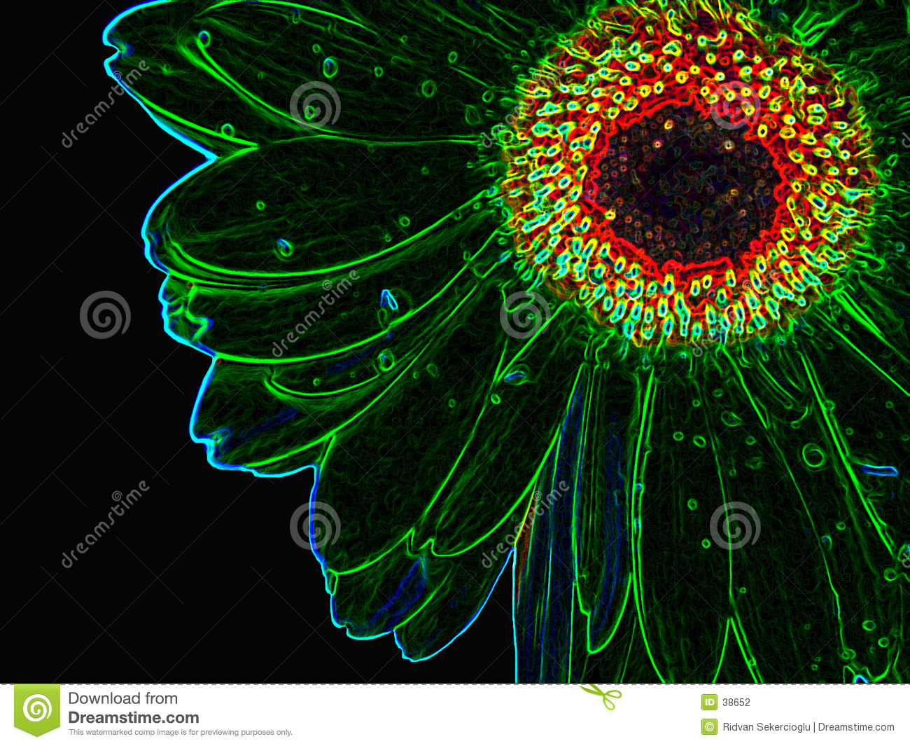 Download Growed al neon dal fiore fotografia stock. Immagine di bordo - 38652