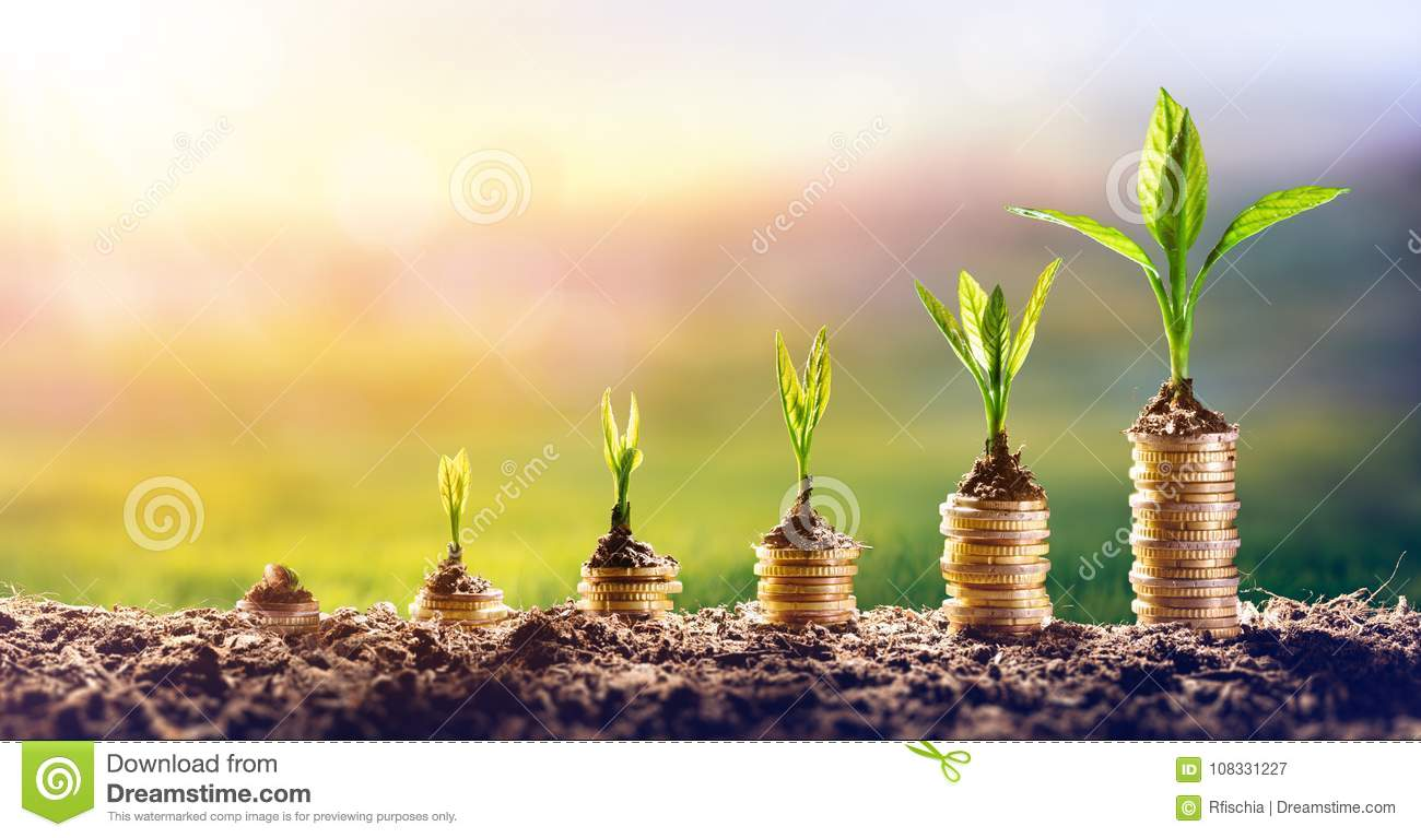 Growing Money - Plant On Coins