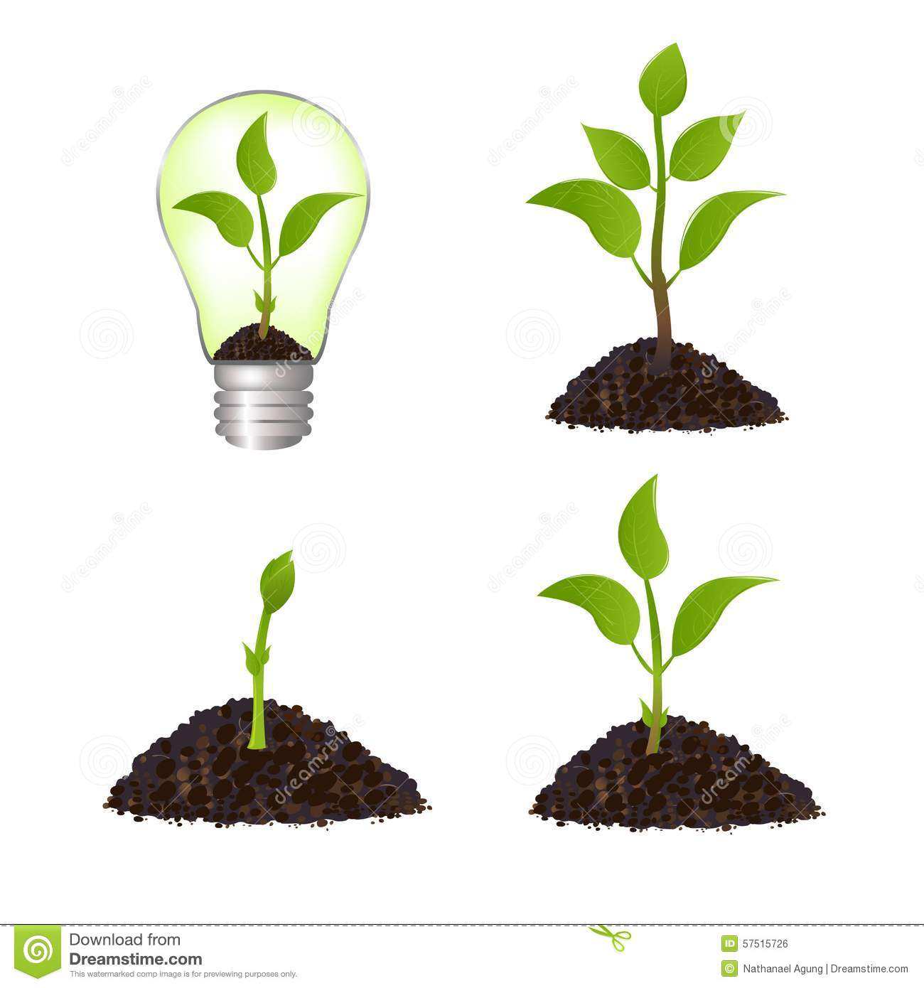Electronic Circuit Project Designers Not Lossing Wiring Diagram Growing Plant Seed Illustration Stock Image Basic Electronics Diy Projects