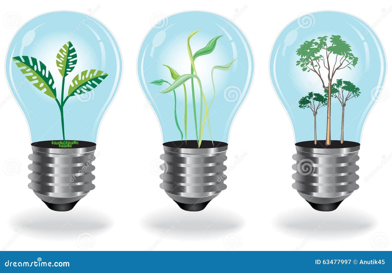Growing Plants, Bulb, Green Stock Vector - Illustration of