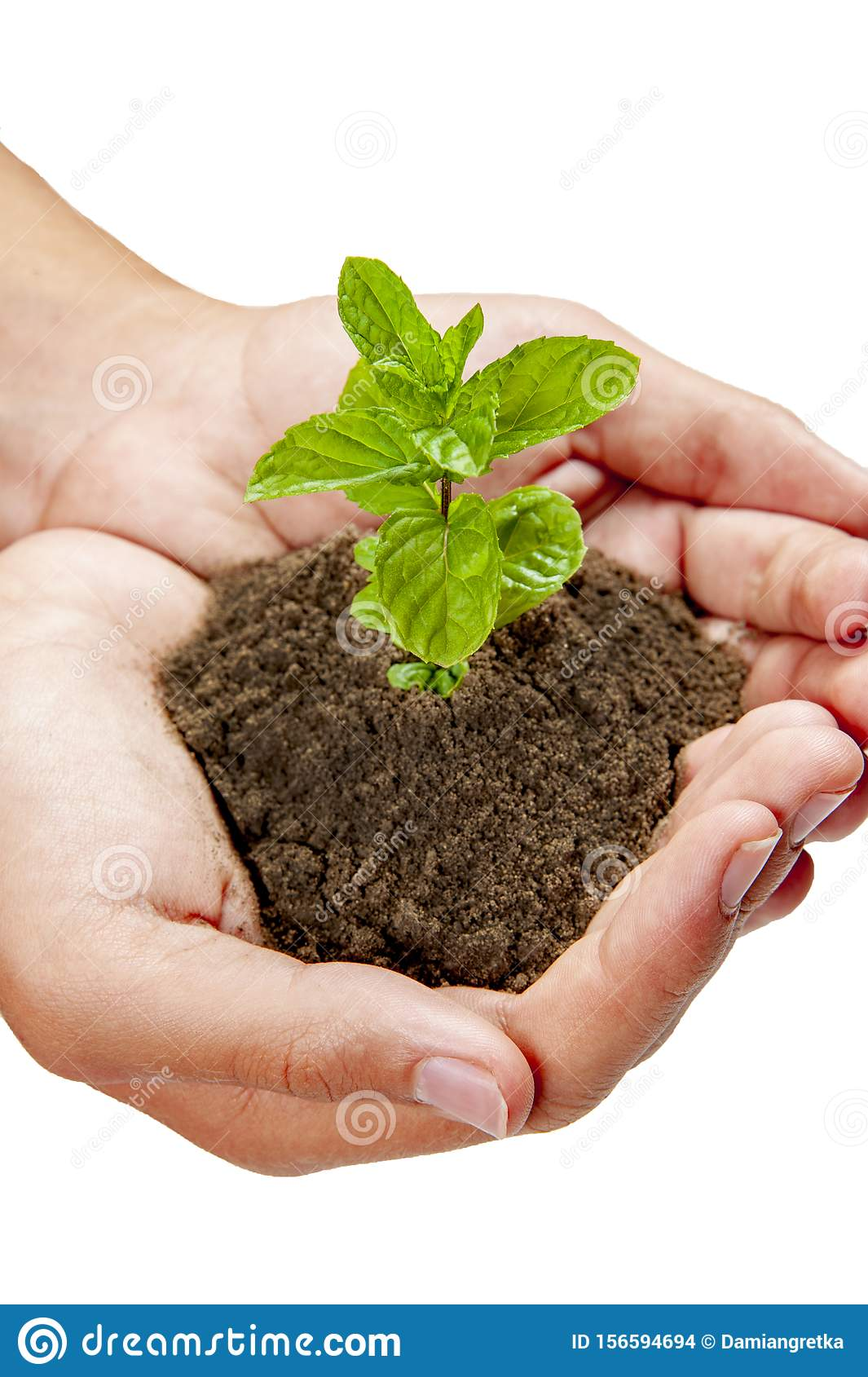 Growing plants on hand and save the earth