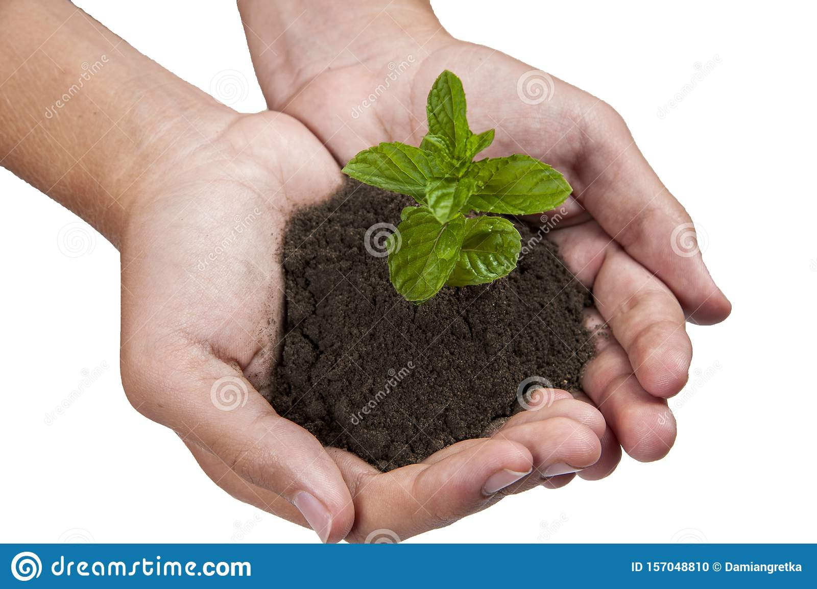 Growing plants on hand and save the earth for the next generation