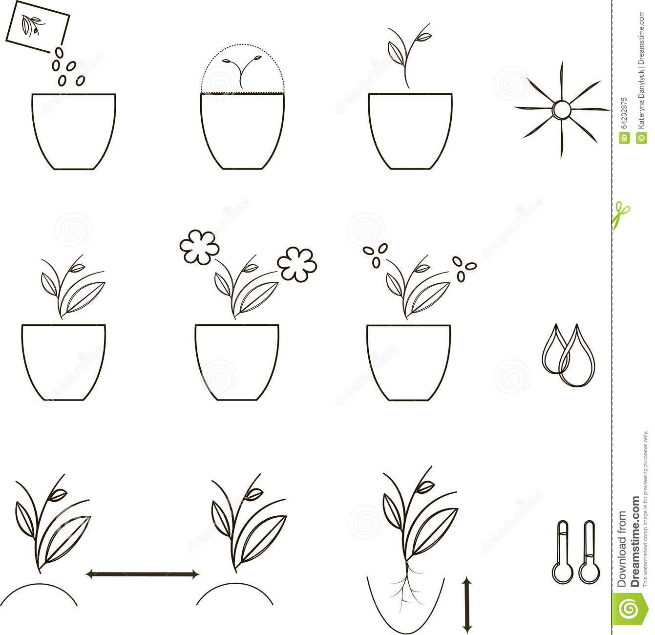 growing seeds icons agronomy thin black lines on a white
