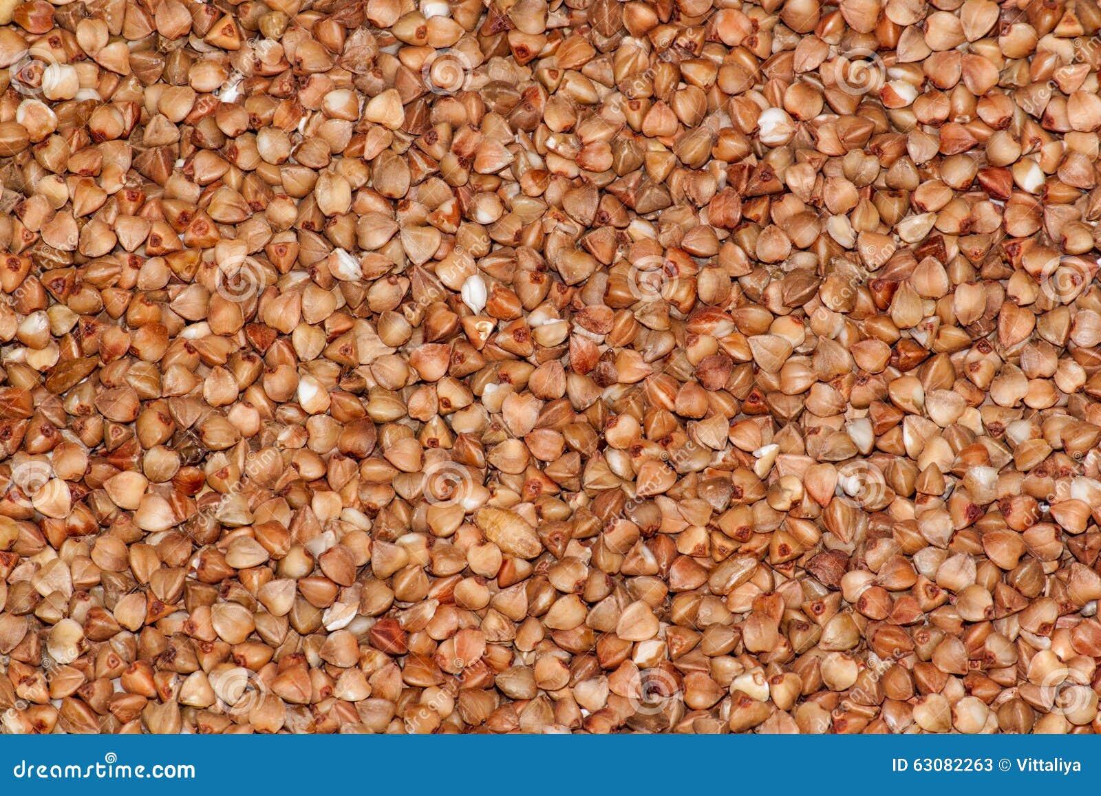 Download Gruau cru de sarrasin image stock. Image du éclailles - 63082263