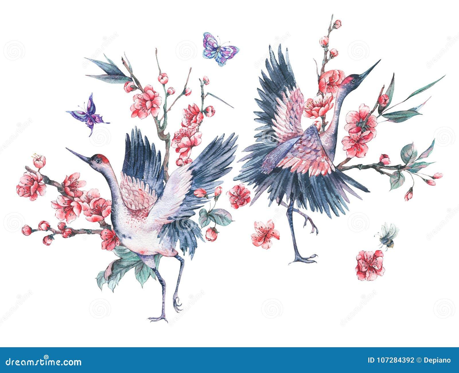 Grue d aquarelle et branches de floraison de cerise