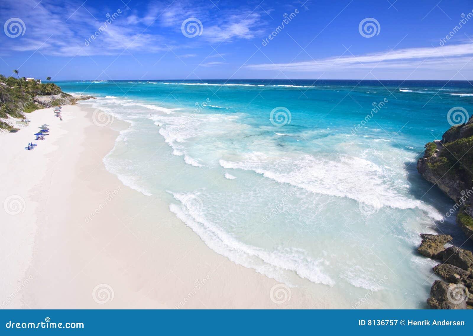 Grue de plage