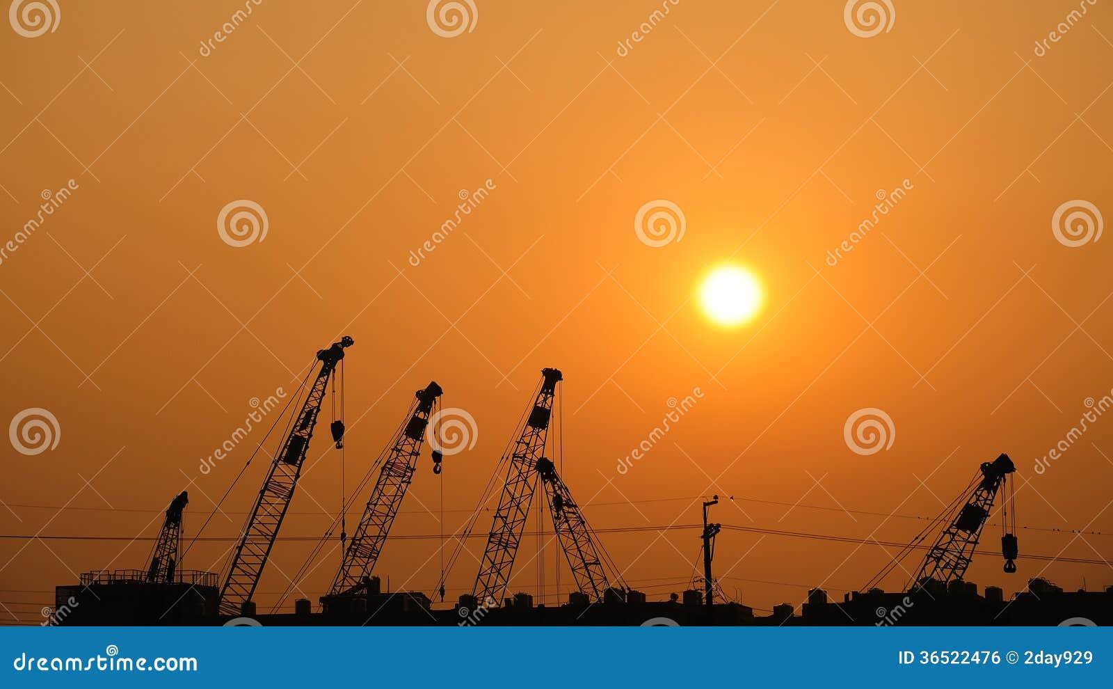 Grues sur le coucher du soleil