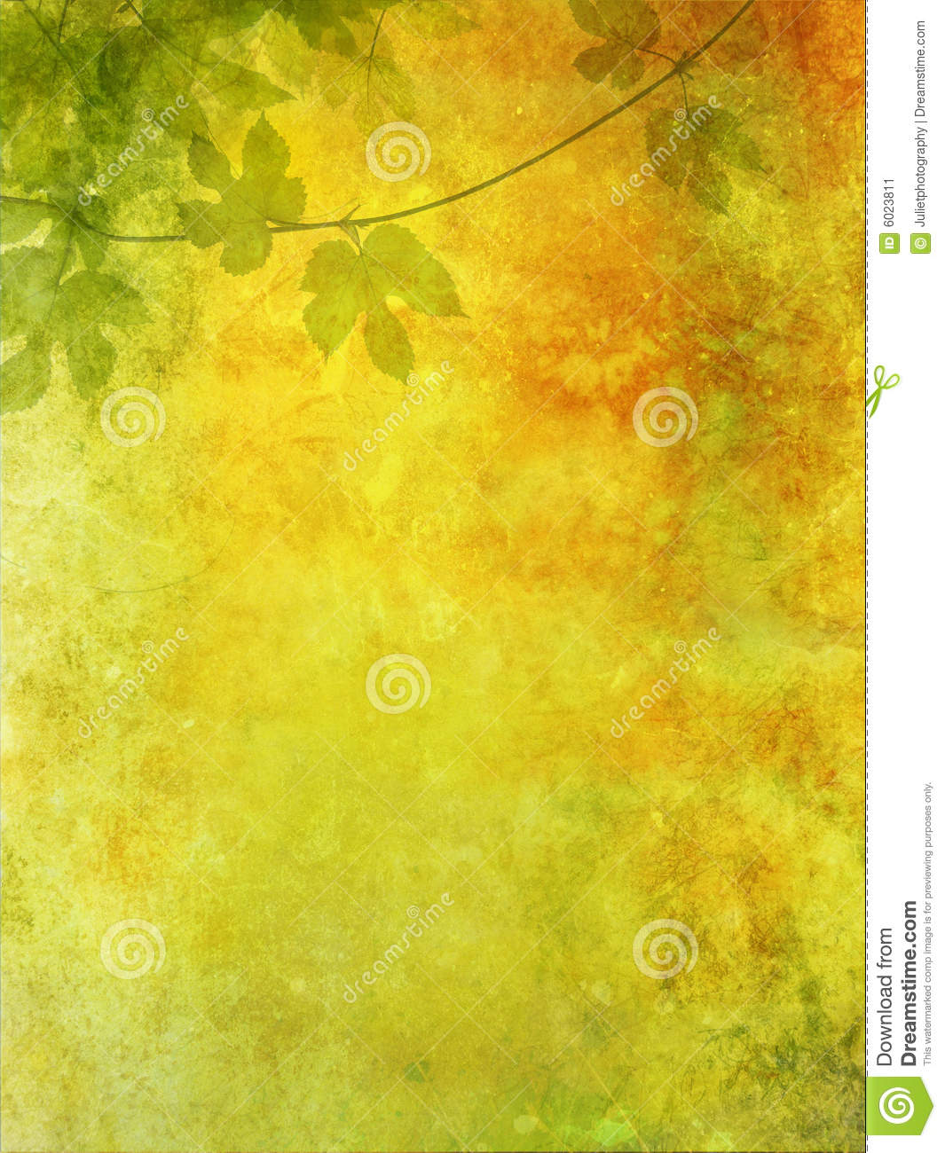 Grunge background with grape leaves