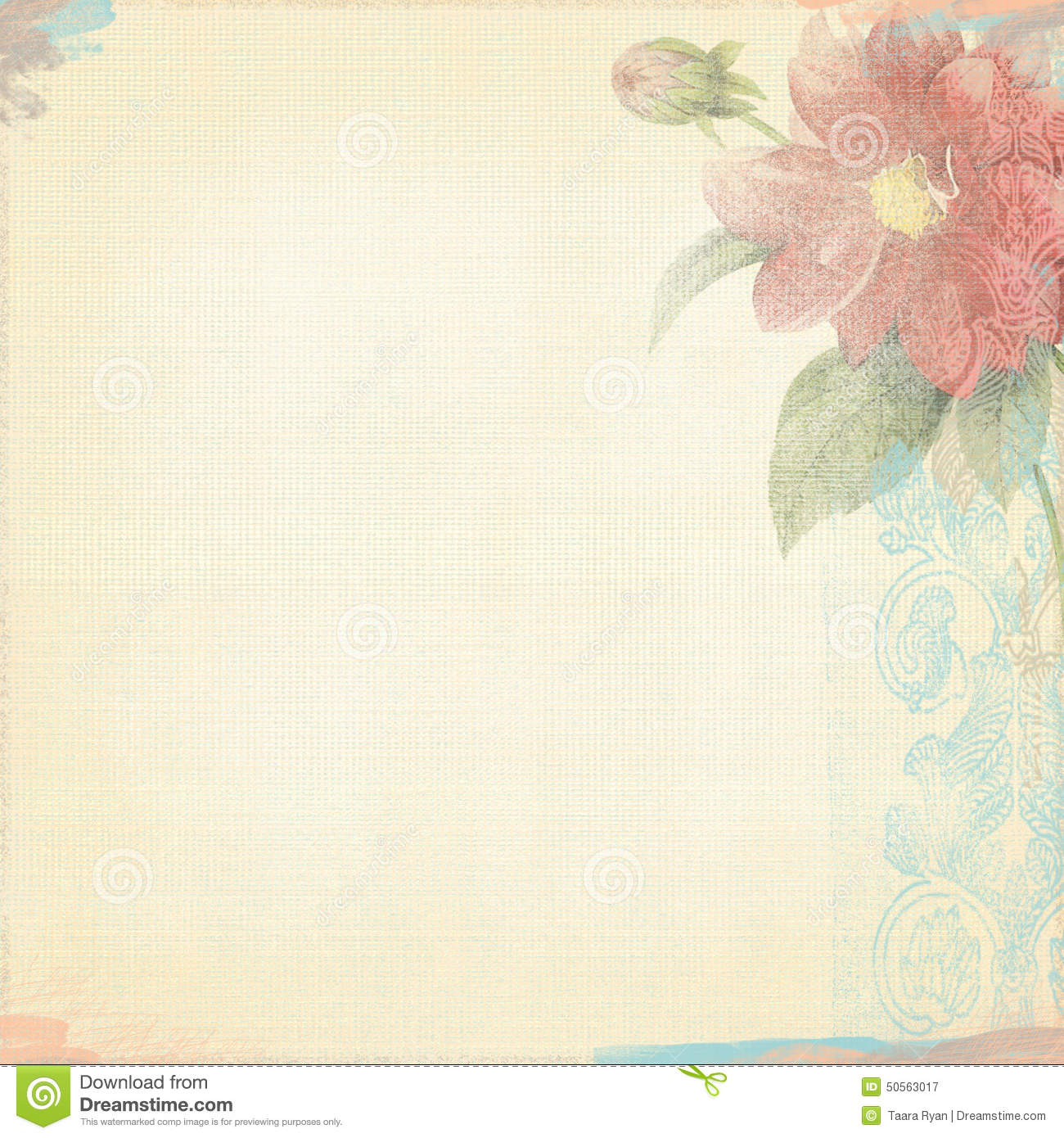 peach wallpaper border