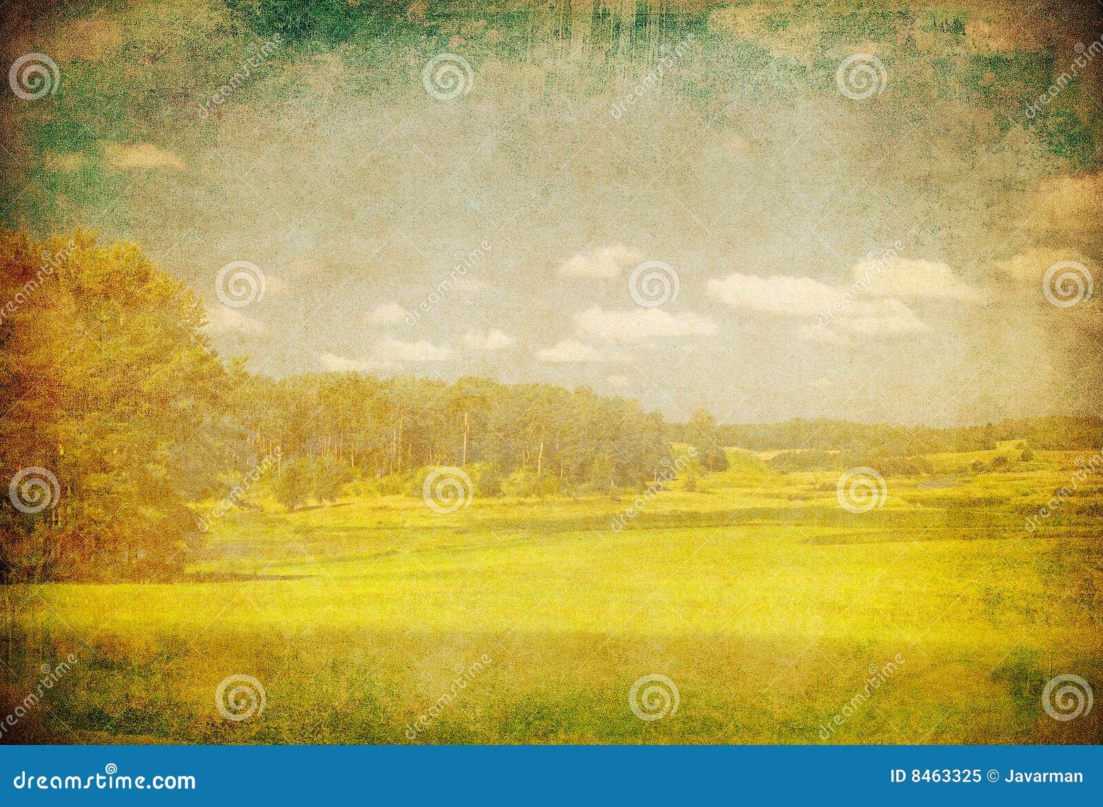 Grunge bild av det gröna fältet och den blåa skyen