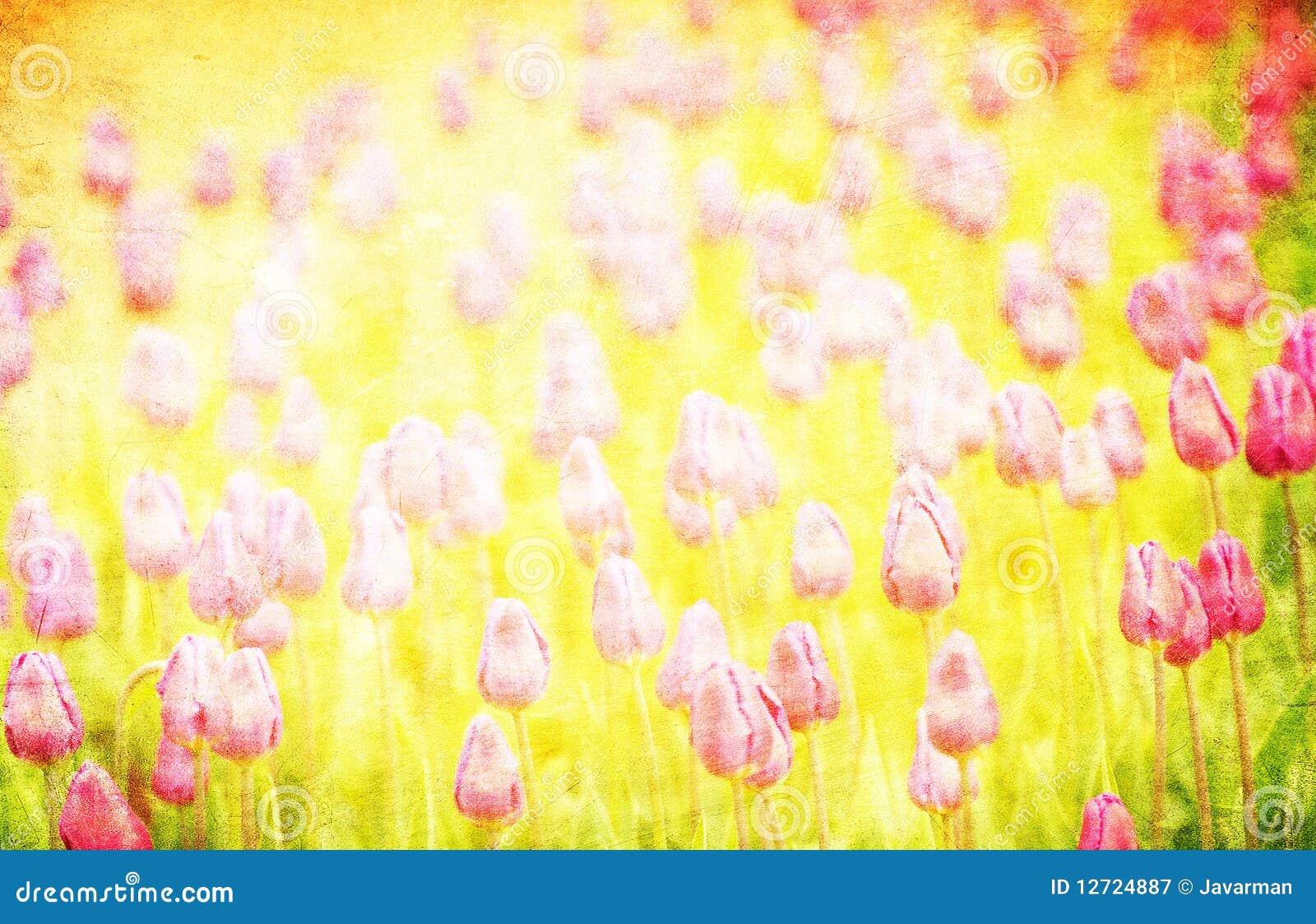 Grunge blom- bakgrund med avstånd för text