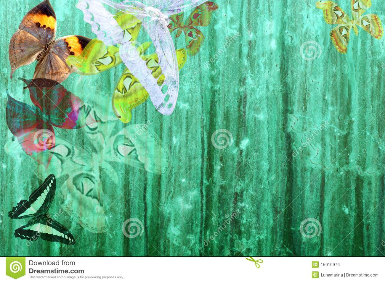 Download Grunge Green Color Background With Butterflies Stock Illustration - Illustration of insects, abstract: 15010974