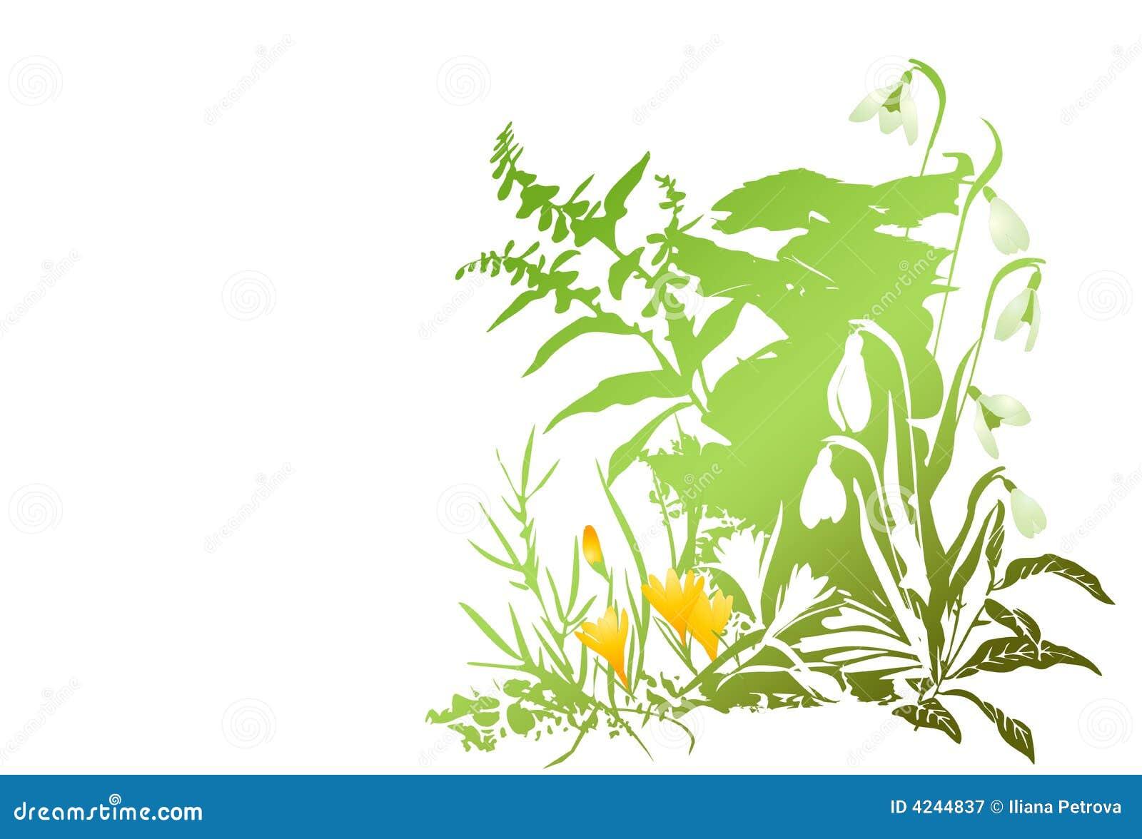 Download Grunge spring flowers stock vector. Illustration of vector - 4244837