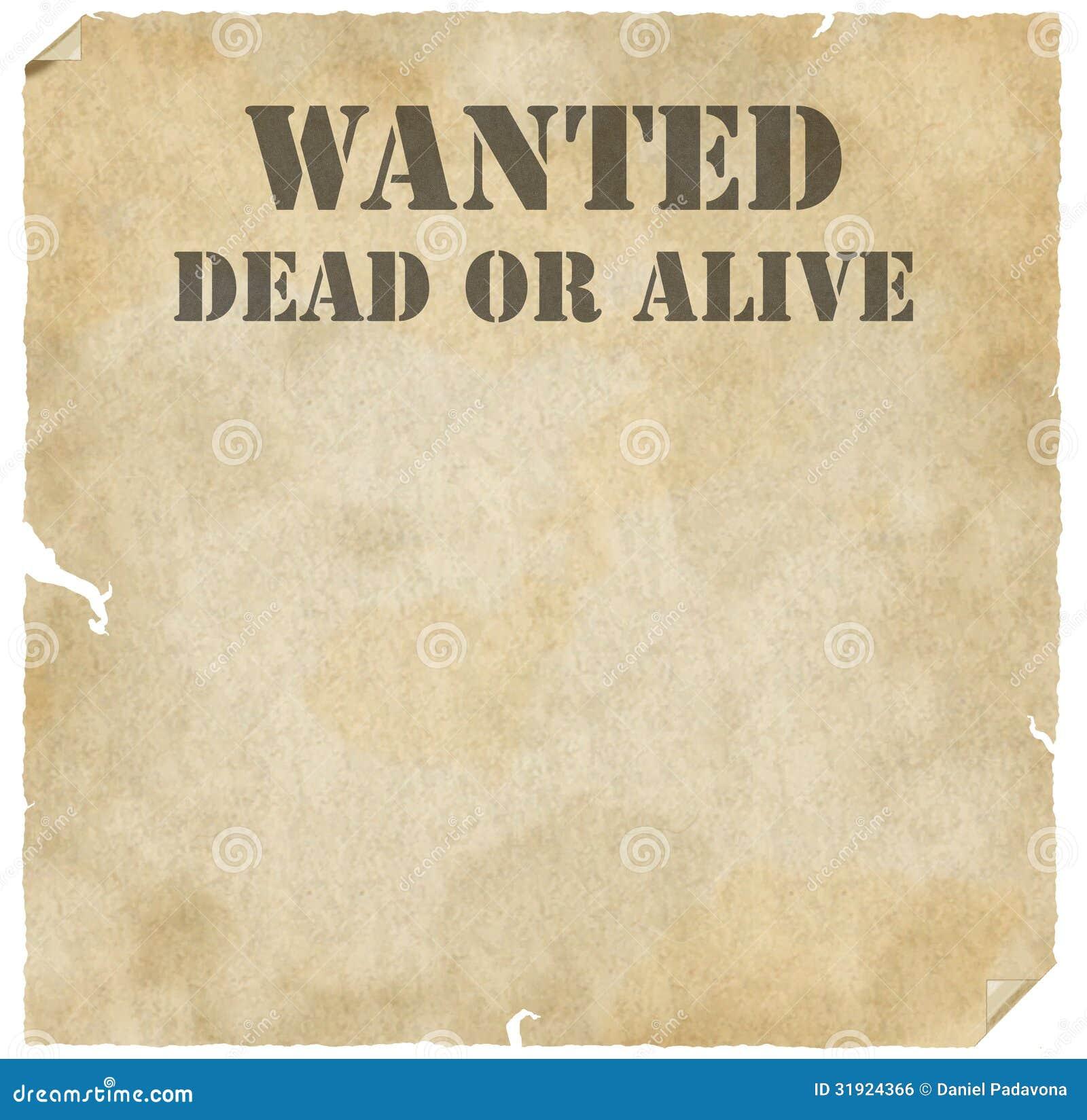 Recenzja dead or alive: dimensions