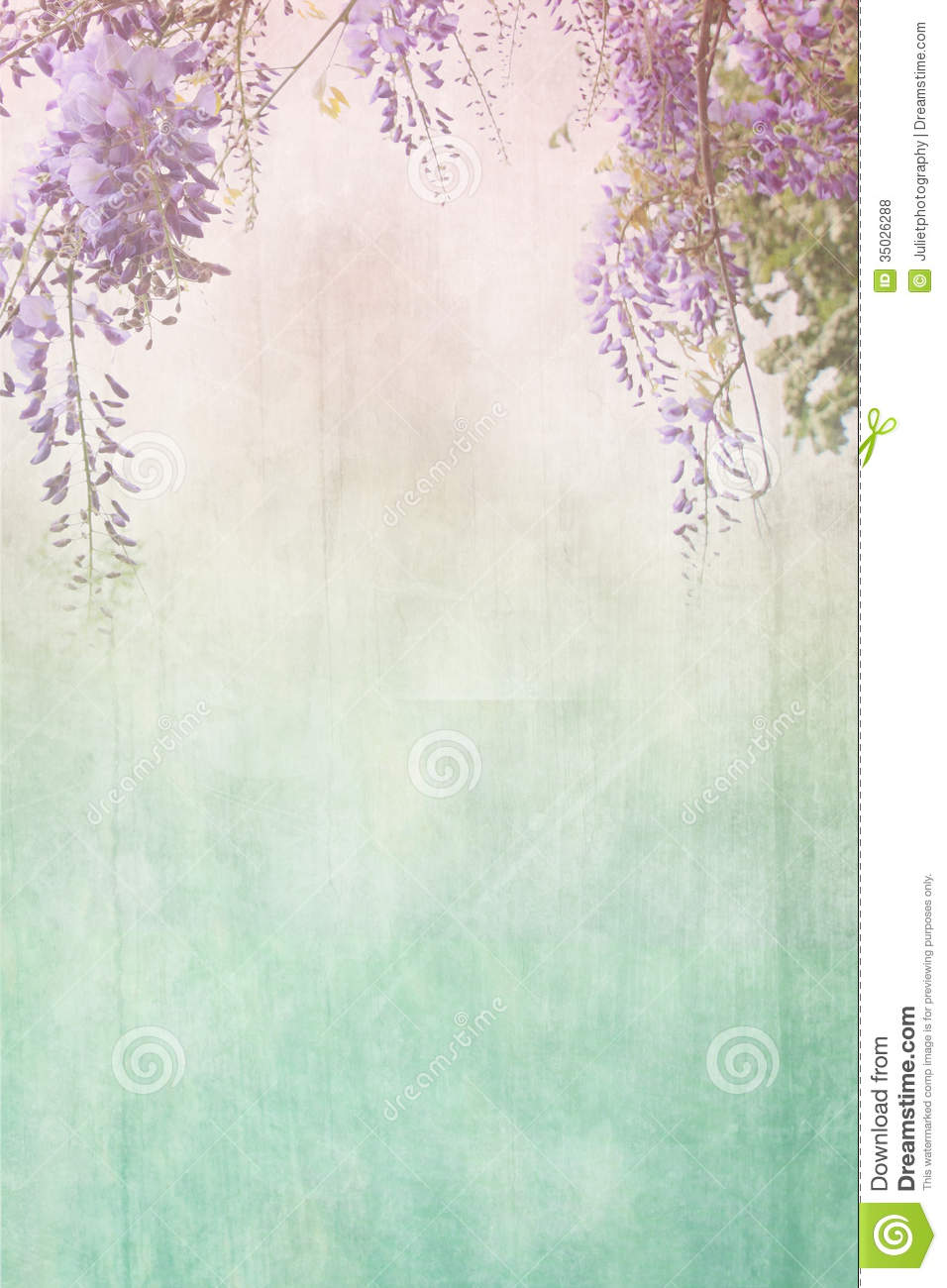 grungy background with floral border stock photo