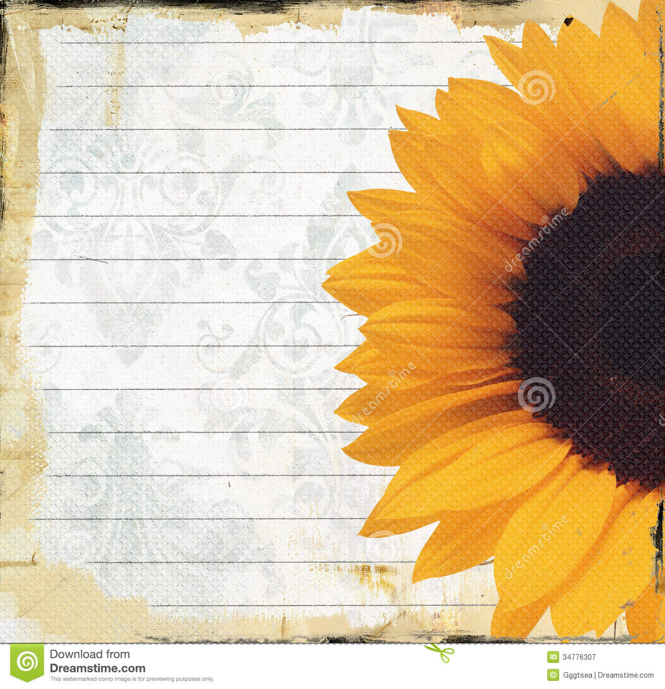 grungy note paper with sunflower royalty free stock
