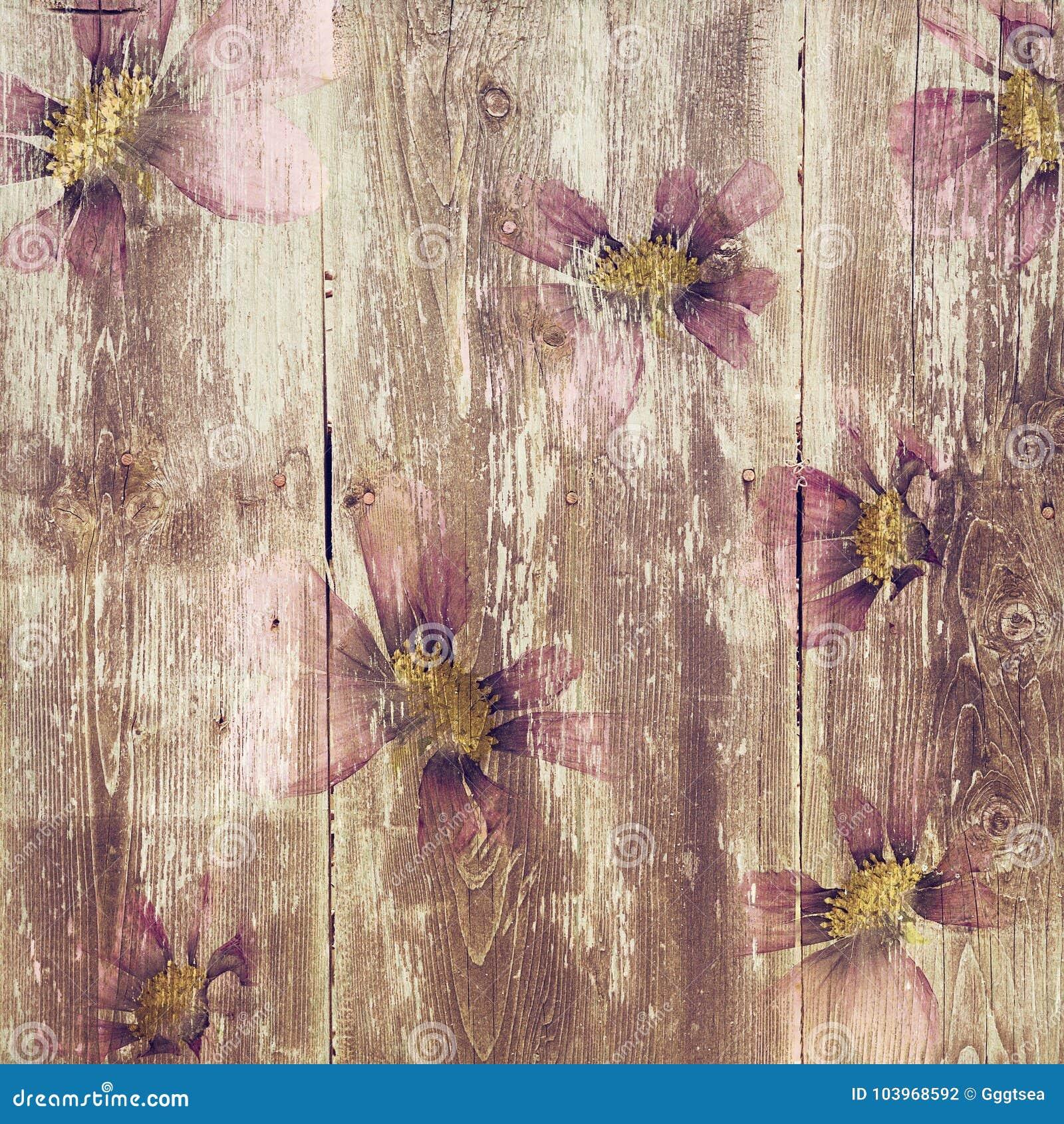 Grungy textuur van het bloem houten patroon