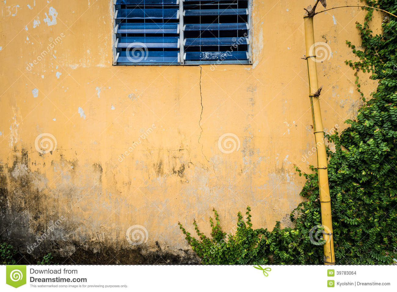 Grungy wall with window, bamboo and greenery.