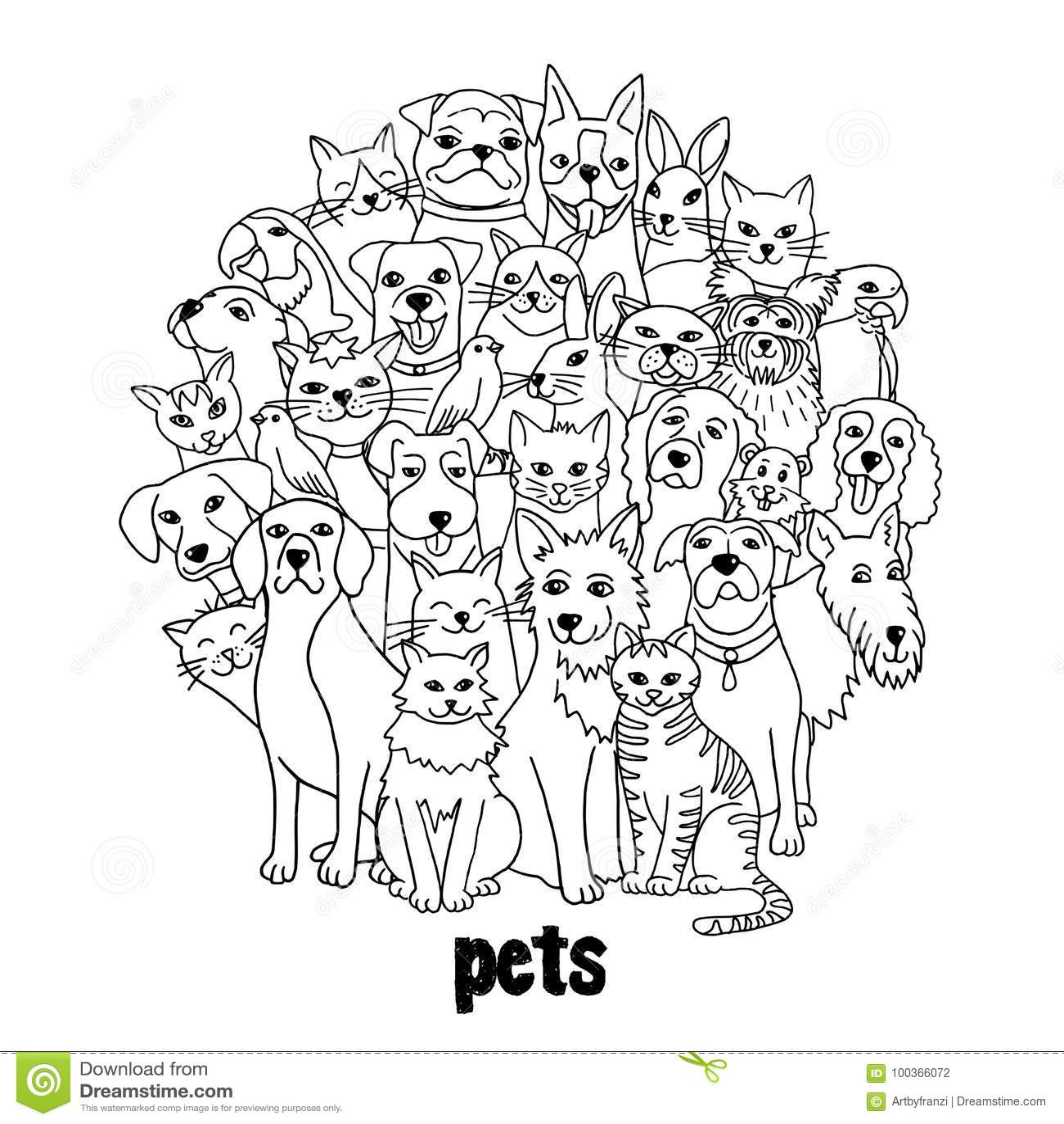 Grupa różnorodni zwierzęta domowe