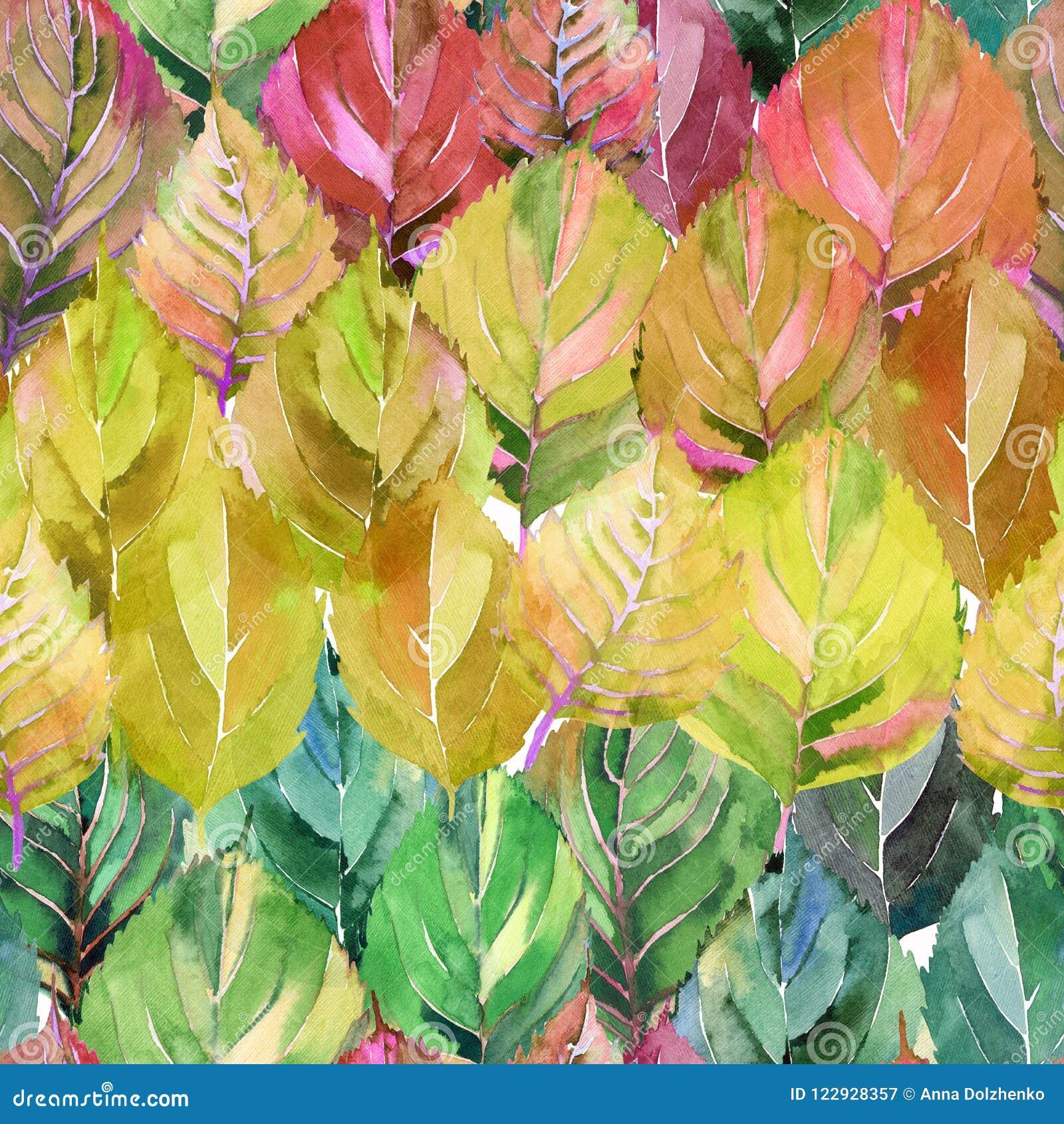 Grupo bonito das folhas de outono como o arco-íris O amarelo alaranjado do outono erval floral brilhante gráfico deixa o teste pa