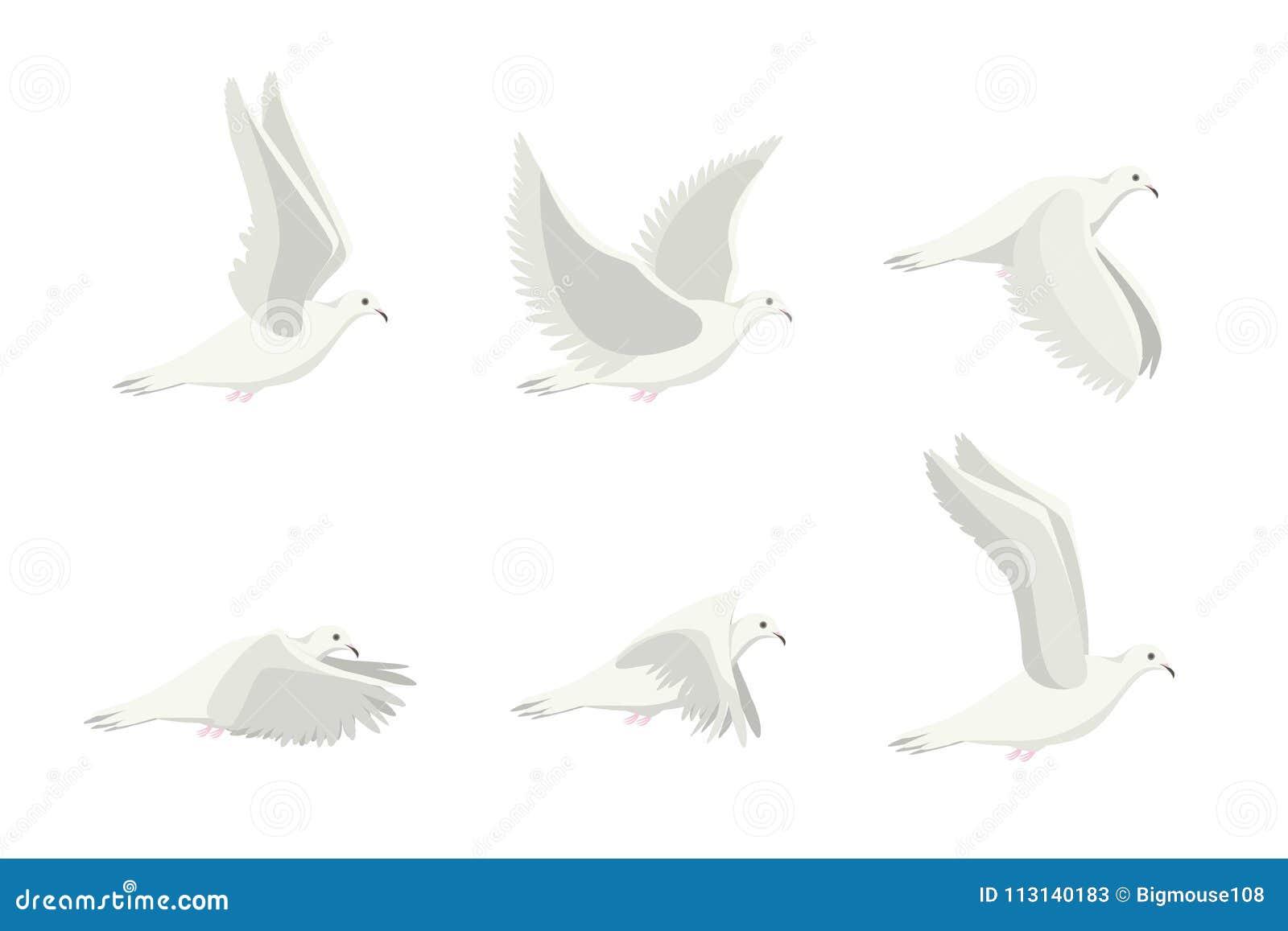Grupo branco do pássaro da pomba dos desenhos animados Vetor