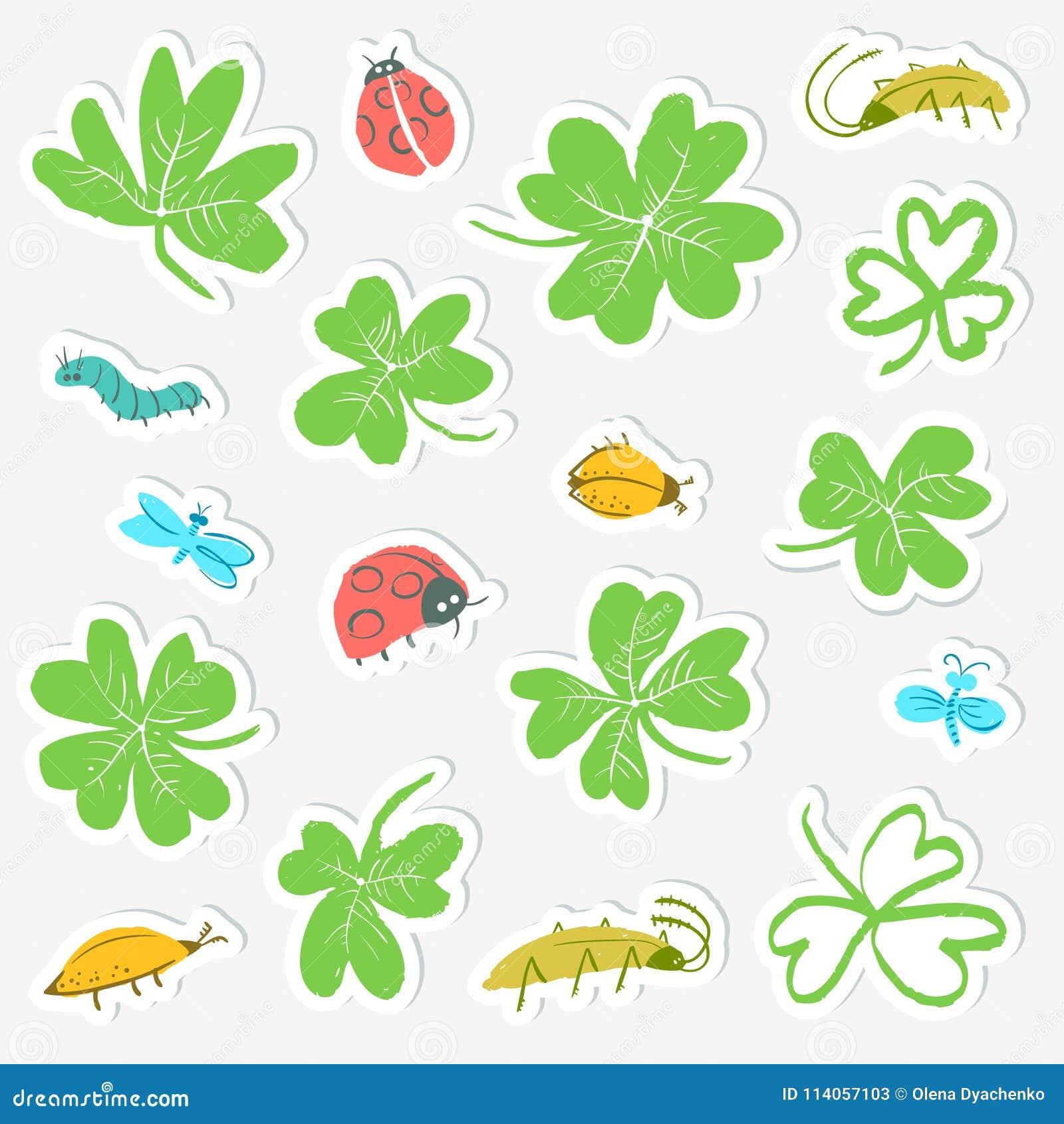 Grupo da etiqueta com folhas e insetos do trevo Coleção com bonito