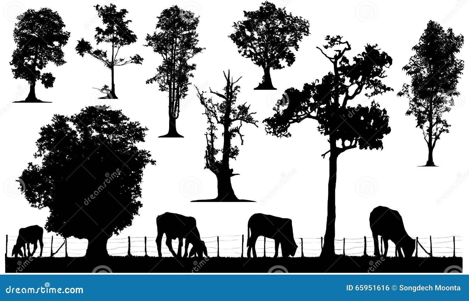 Grupo da silhueta da árvore e dos rebanhos animais