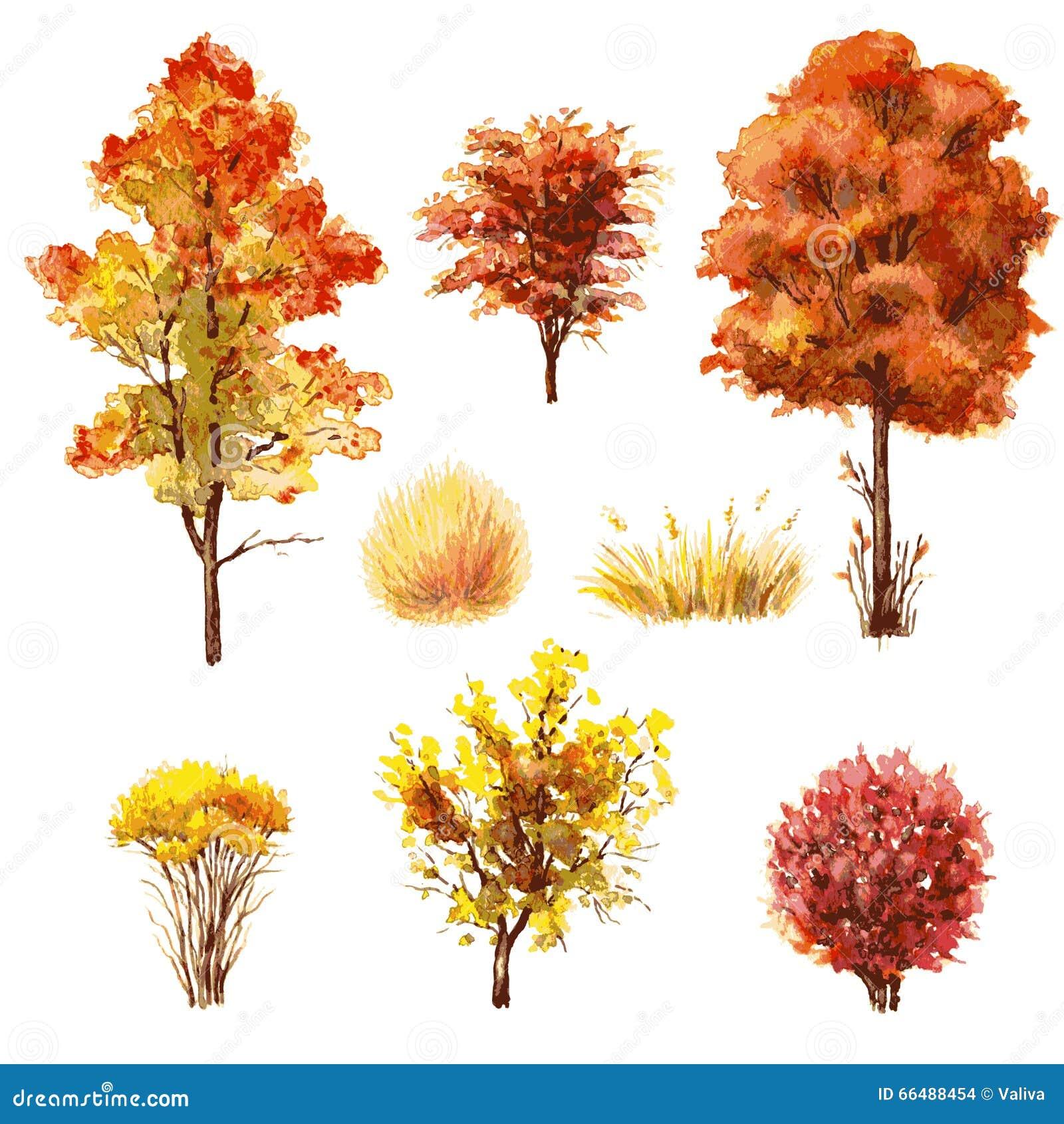 Grupo de árvores e de arbustos do outono