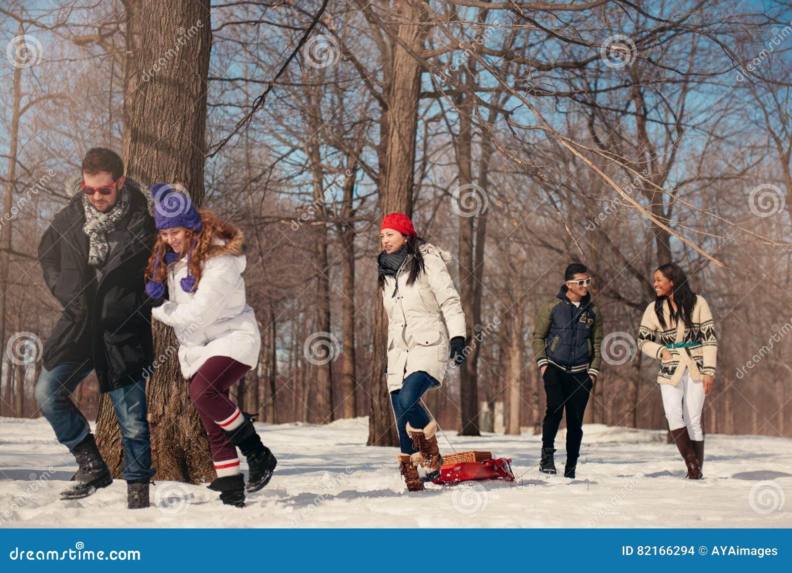 Grupo de amigos que gozan que tira de un trineo en la nieve en invierno