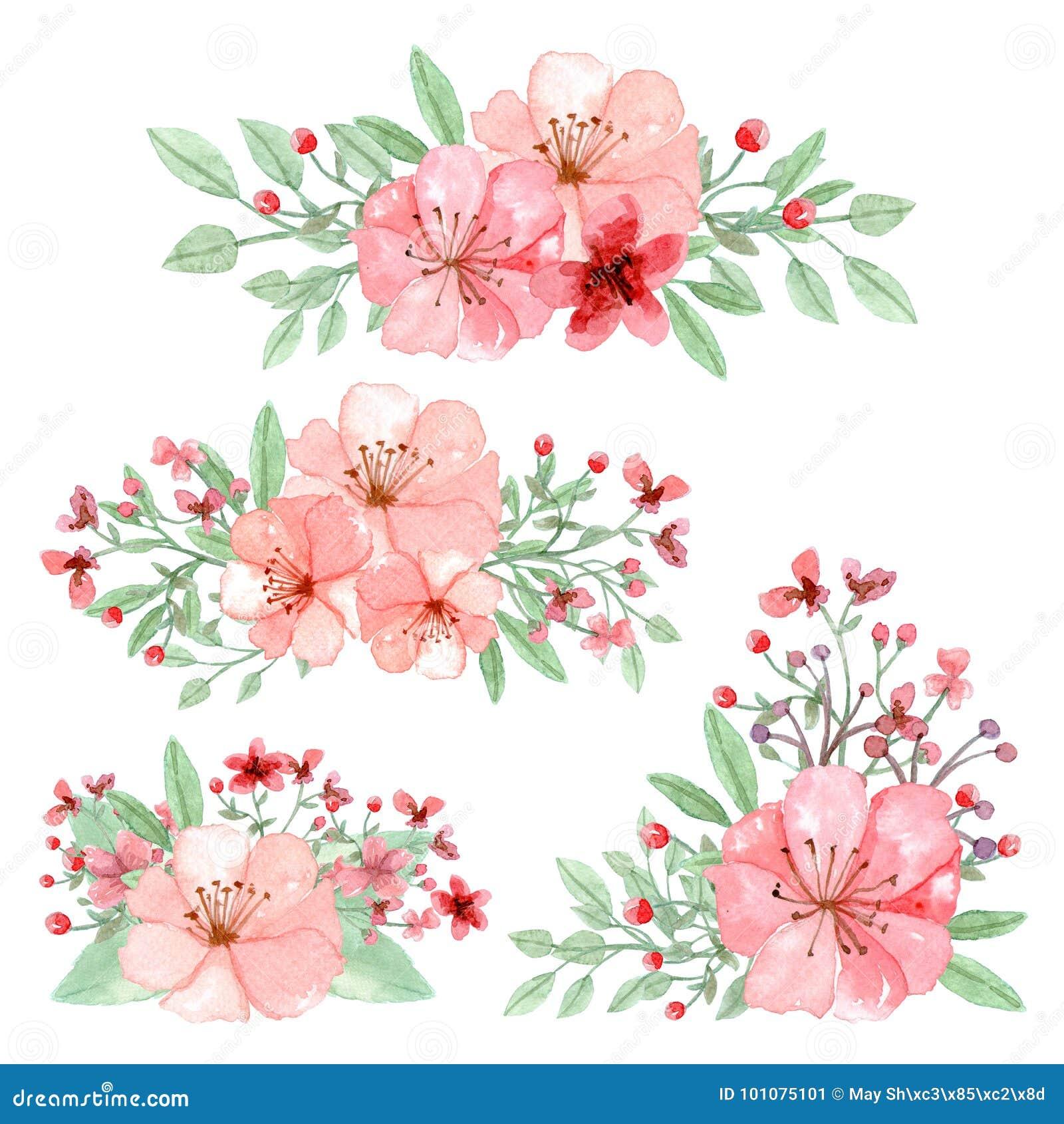 Grupo De Arranjos Das Flores Das Folhas E Dos Ramos Ilustracao