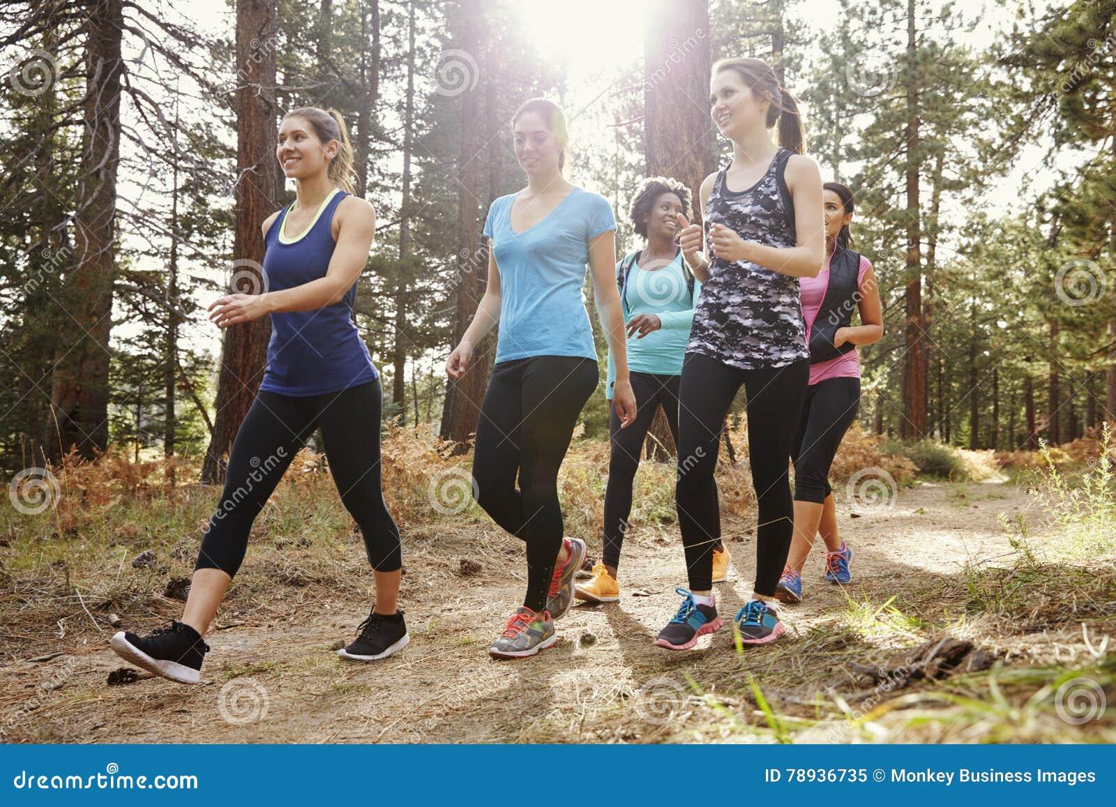 Grupo de corredores das mulheres que andam em uma floresta, fim acima