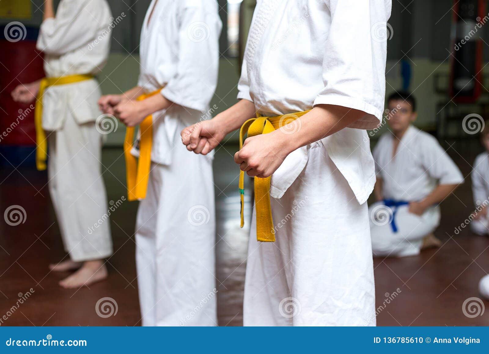 Grupo de crianças em um treinamento das artes marciais