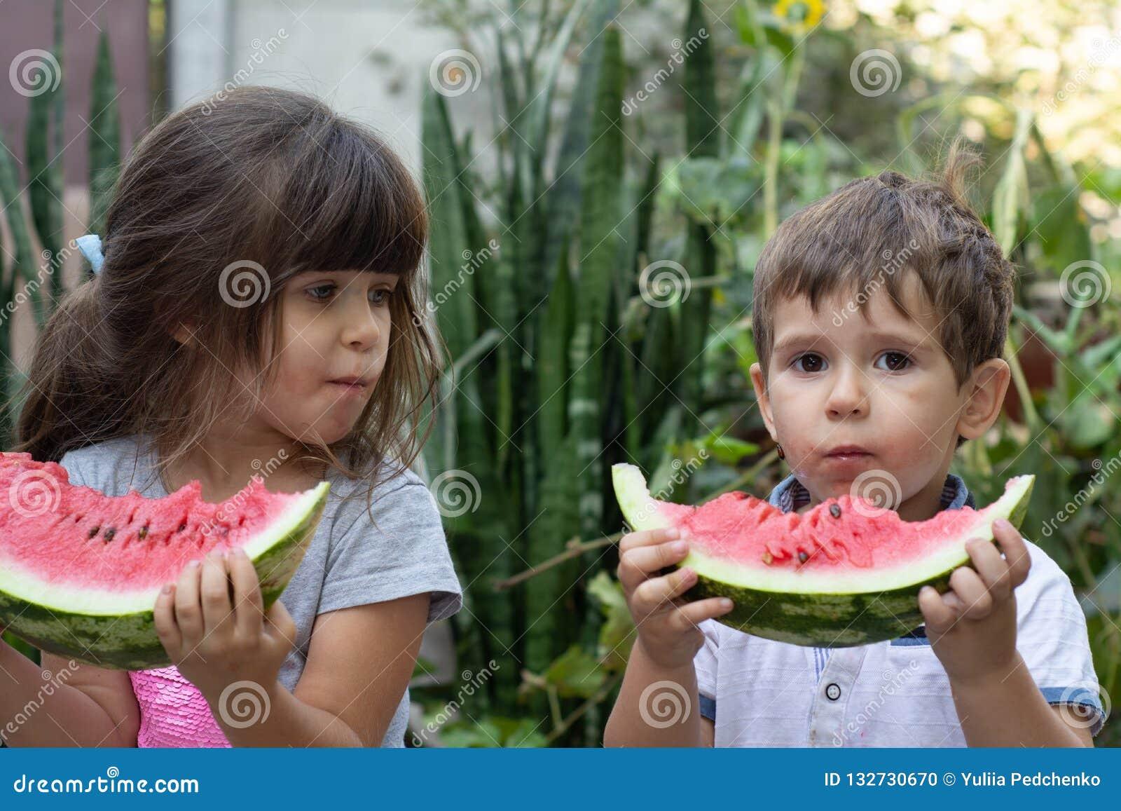 Grupo de crianças felizes que comem a melancia na grama no parque do verão Crianças com melancia