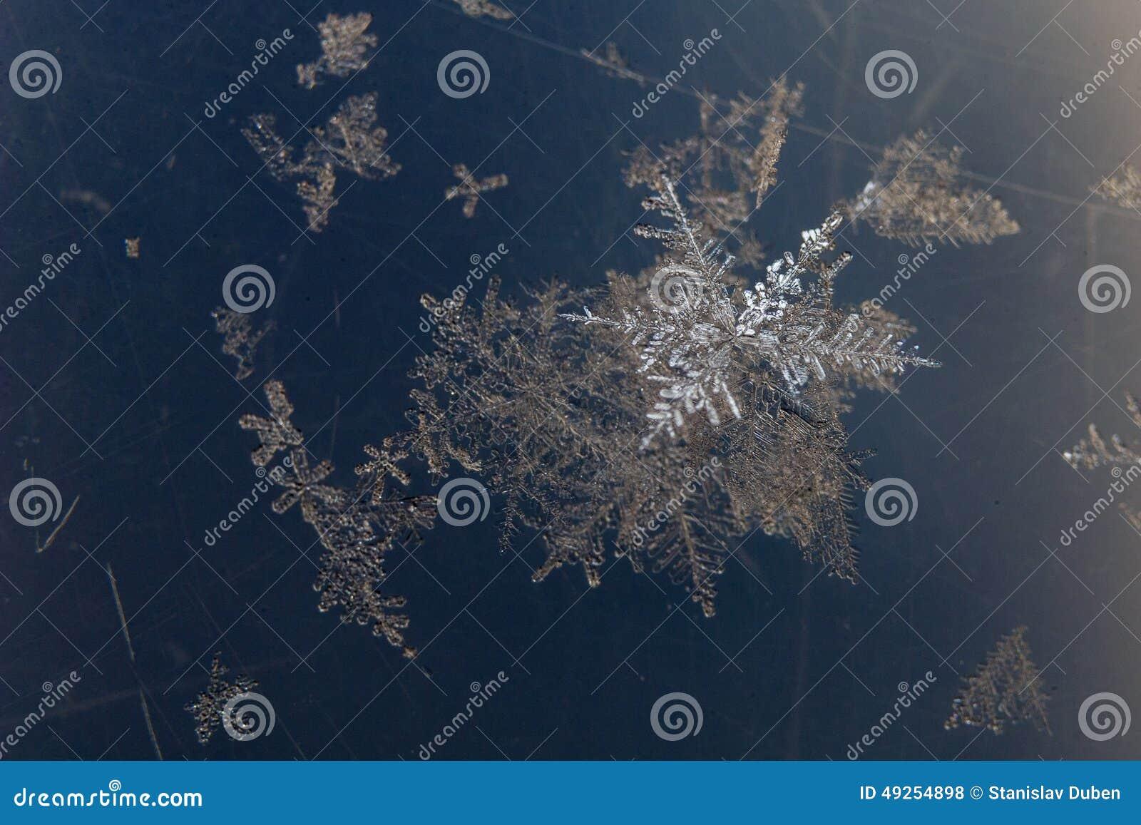 Grupo de detalhe dos flocos de neve