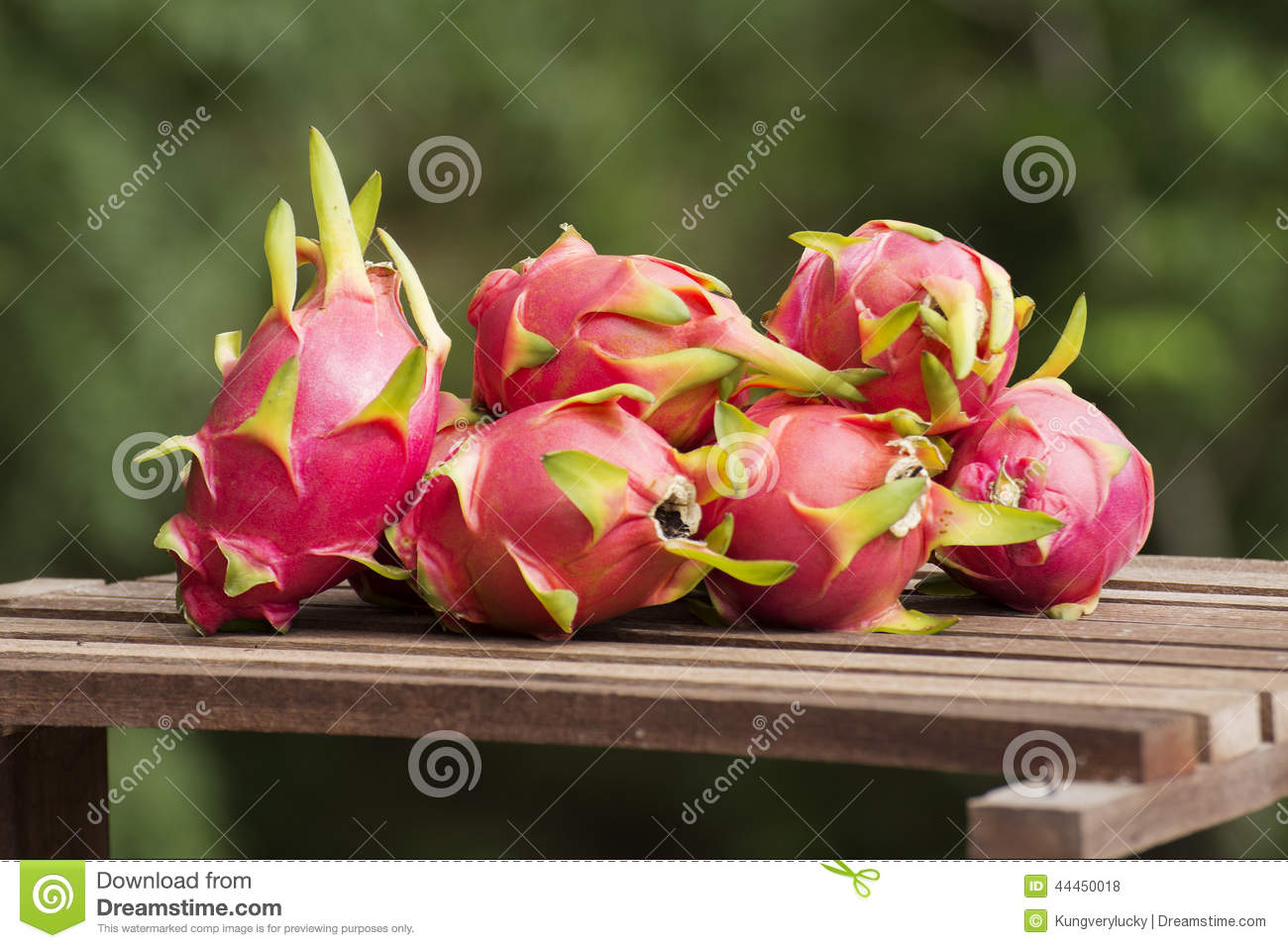 Grupo de Dragon Fruit