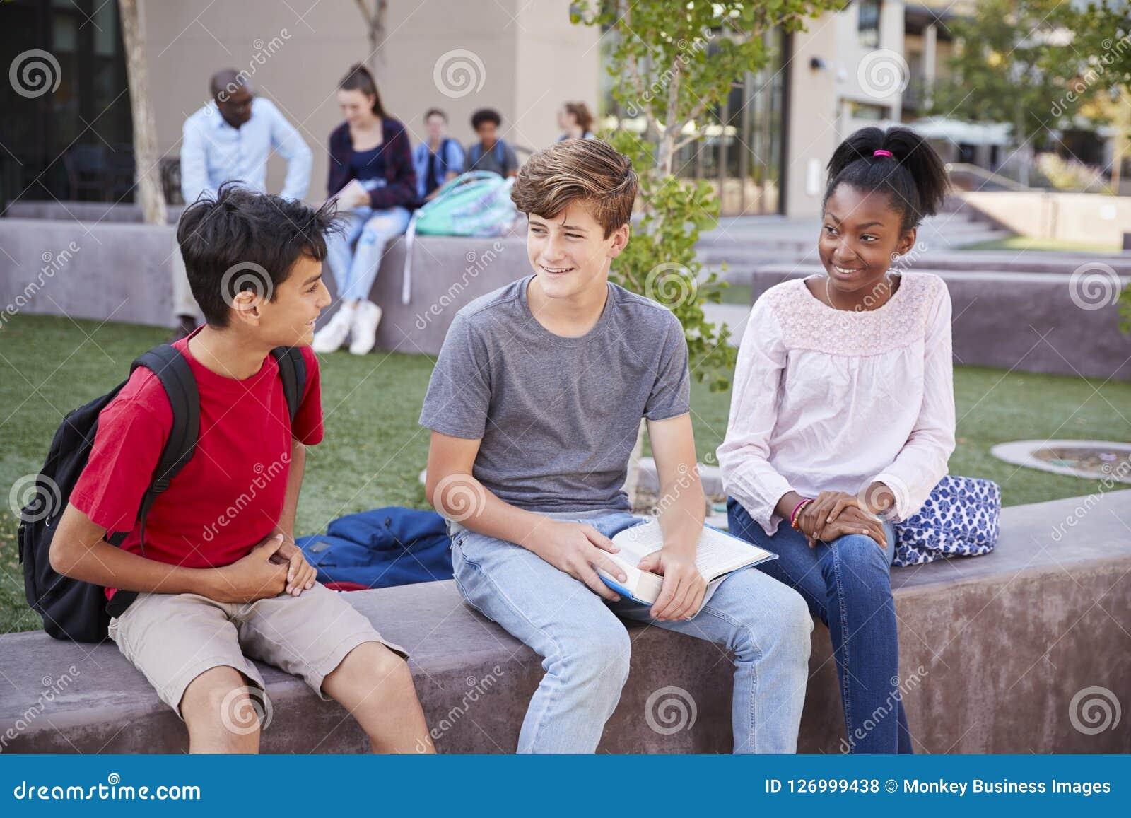 Grupo de estudiantes de la High School secundaria que estudian al aire libre durante hendidura
