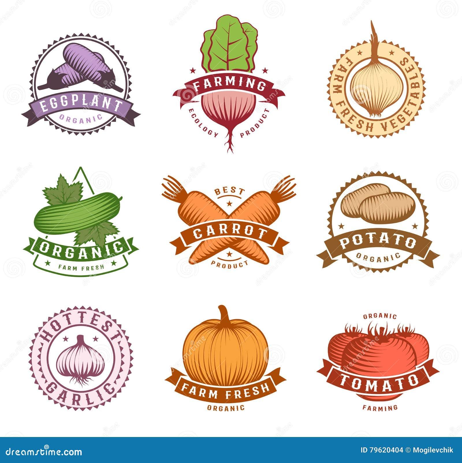 Grupo de etiquetas colorido dos vegetais