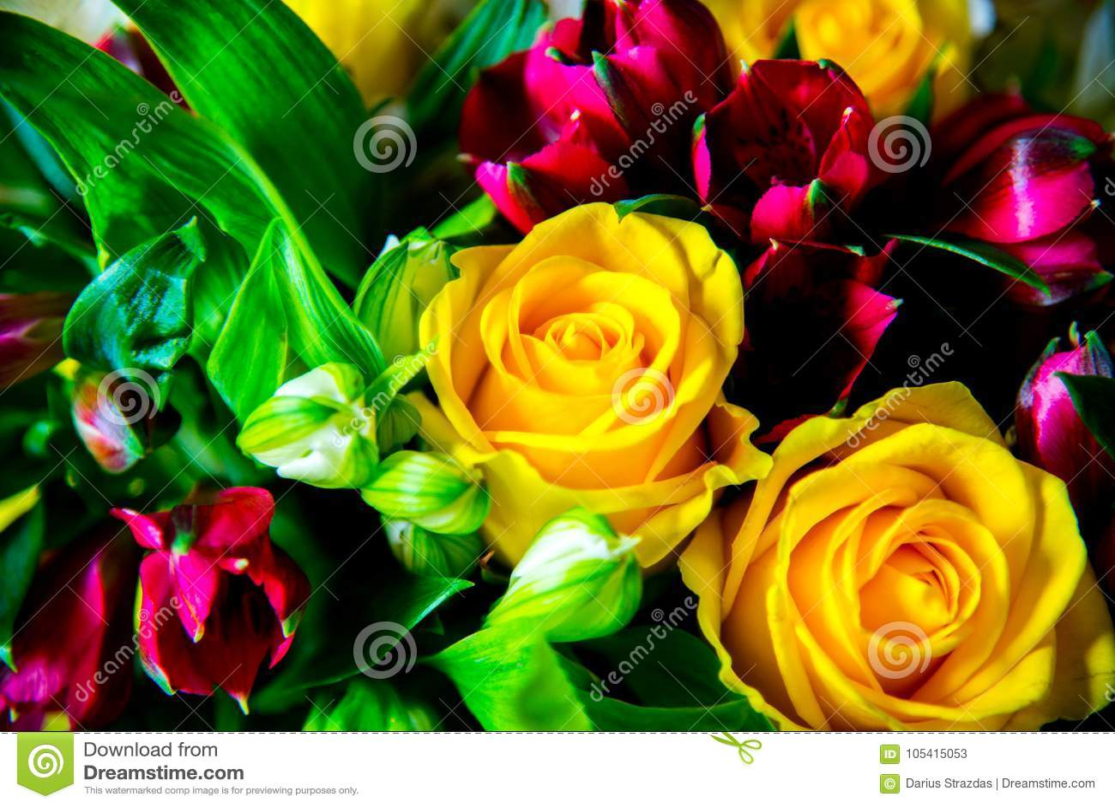 Grupo de flores diferente e fresco