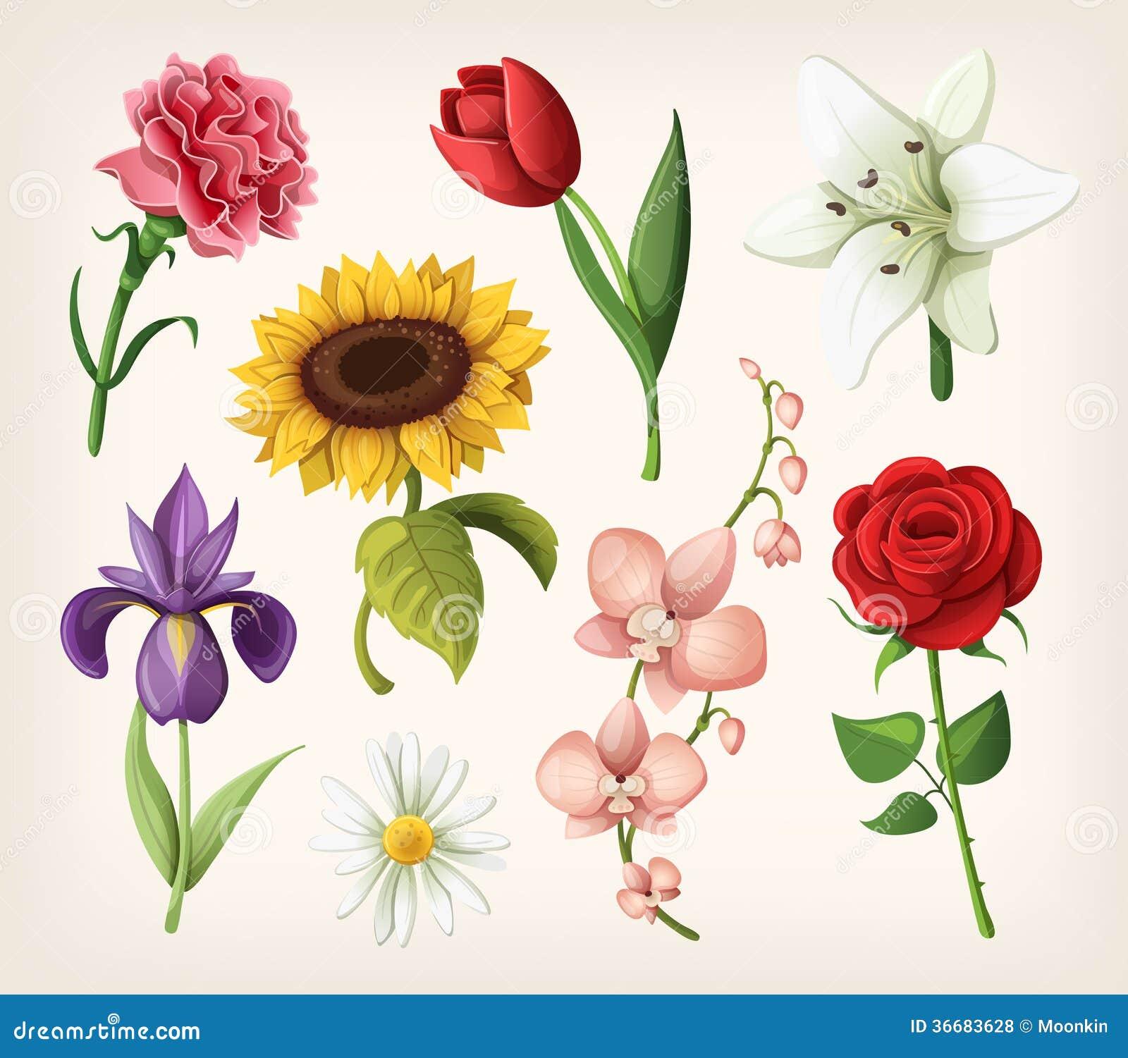 Grupo de flores românticas do verão