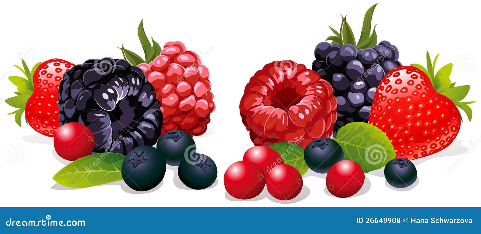 Grupo de fruta fresca
