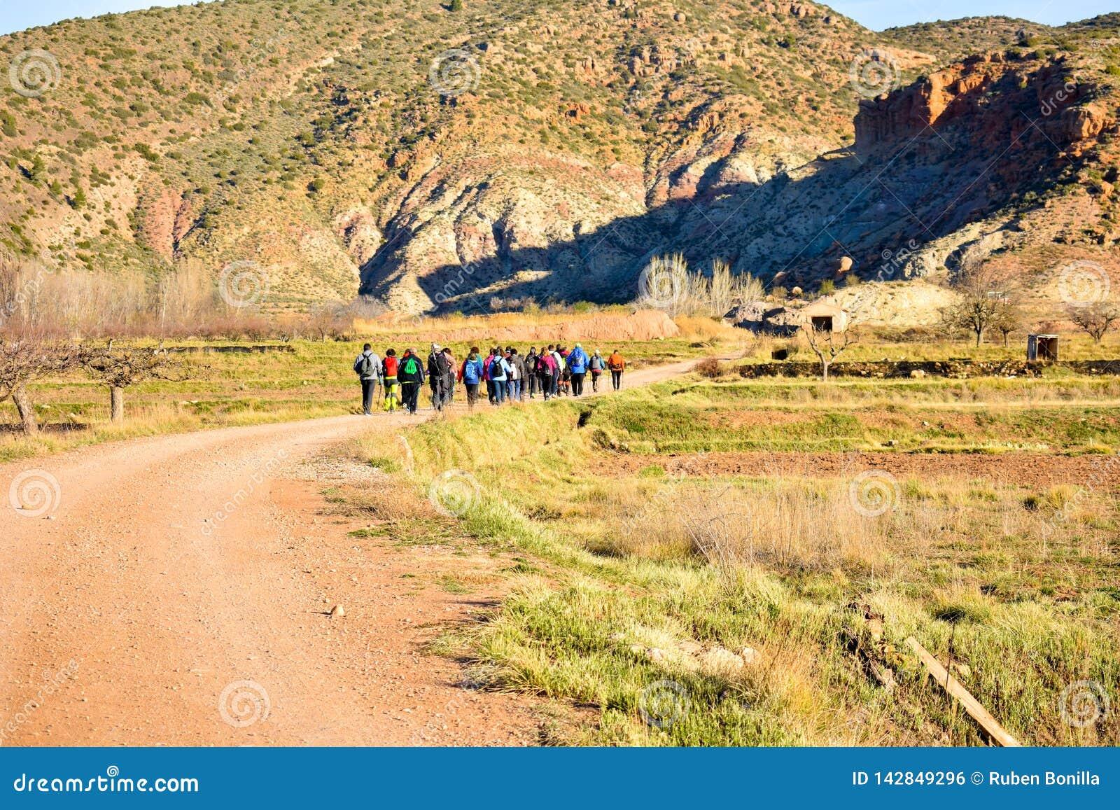 Grupo de gente adulta con el senderismo colorido de la mochila en una trayectoria de la arena y de piedras que camina a la montañ
