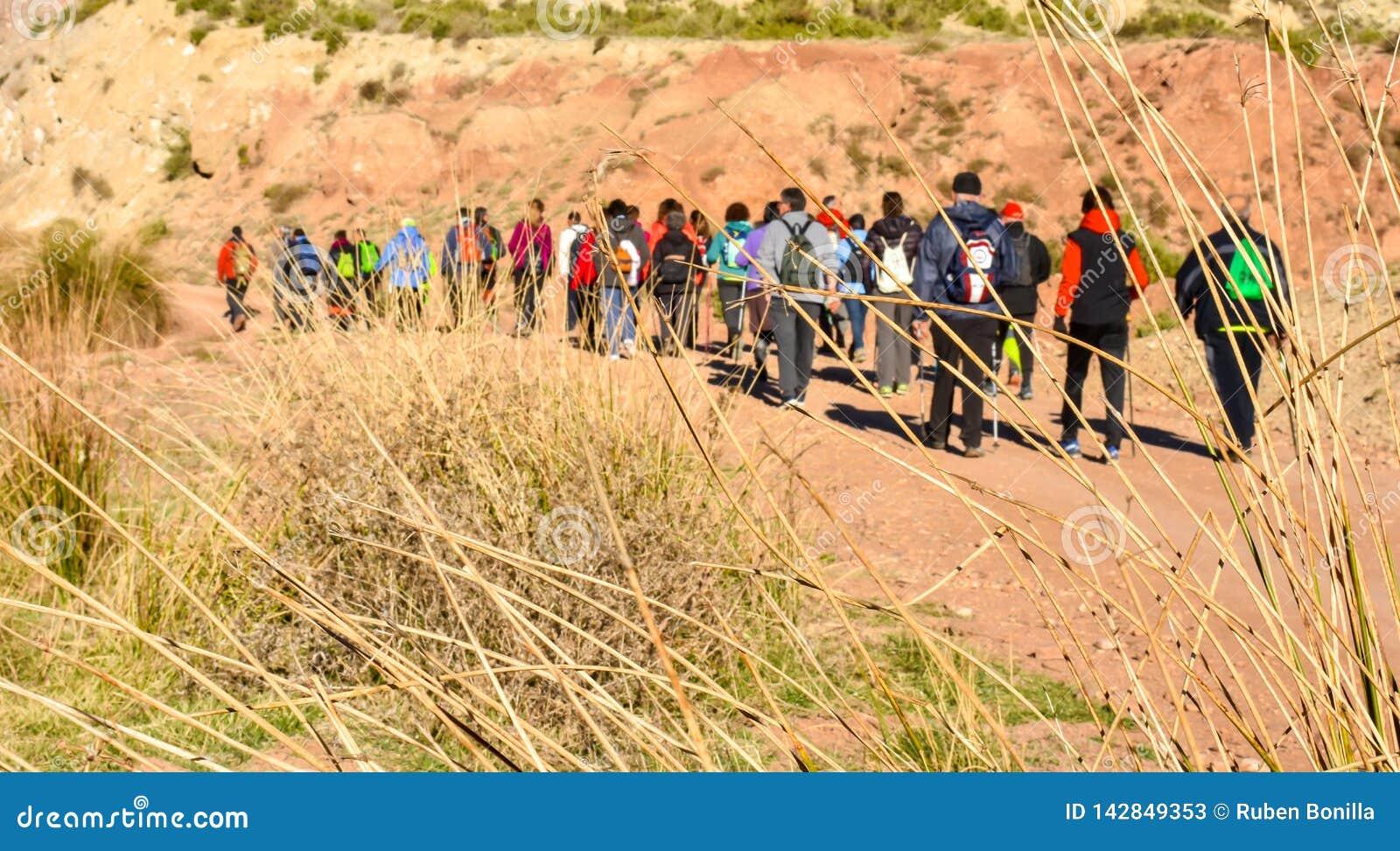 Grupo de gente adulta con el senderismo colorido de la mochila en una trayectoria de la arena y de piedras que camina a la monta?