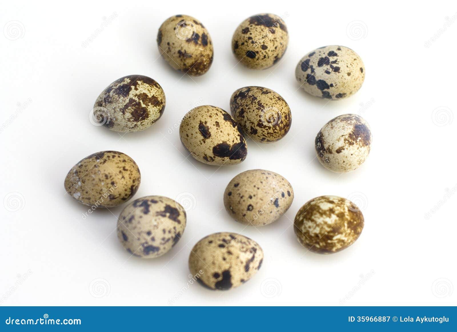 Grupo de huevos de codornices