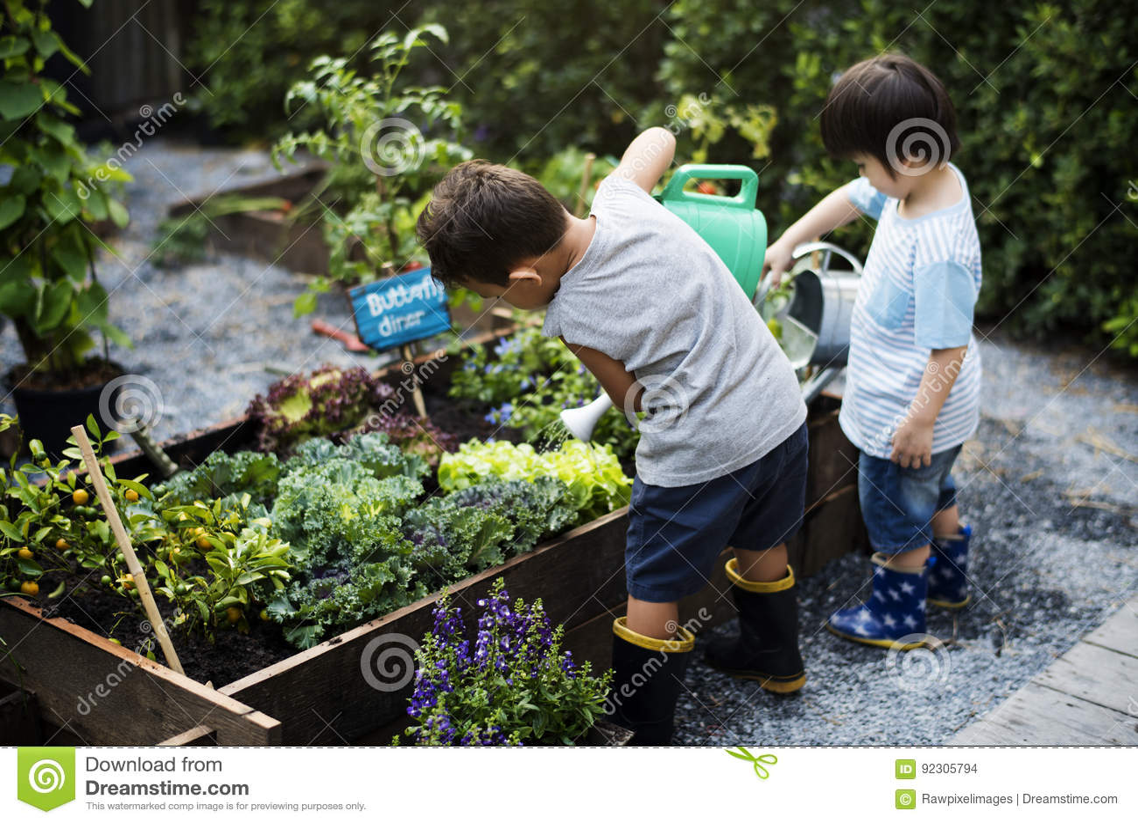 Grupo de niños de la guardería que aprenden cultivar un huerto al aire libre