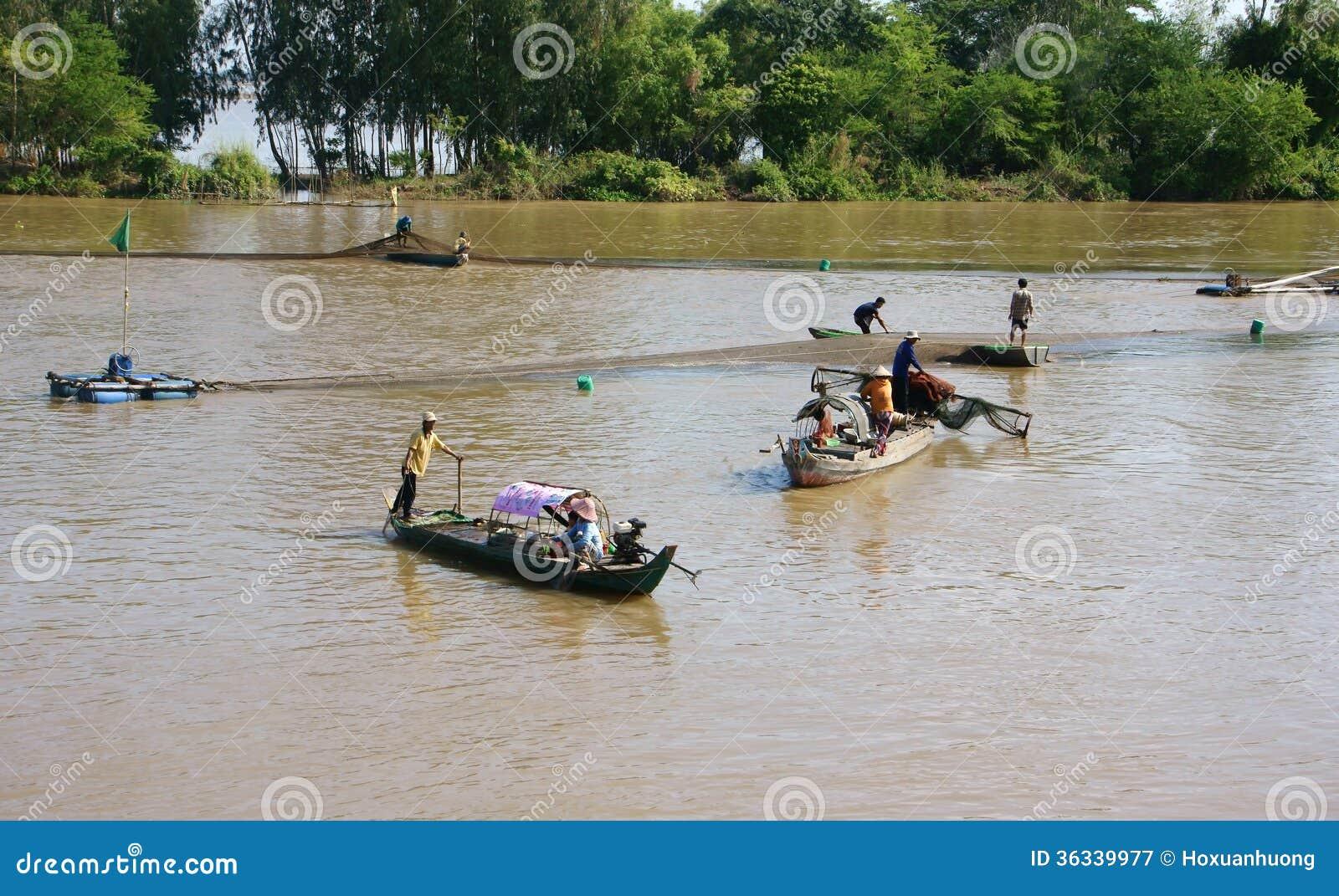 Grupo de pescados de cogida del pescador por la red en el río